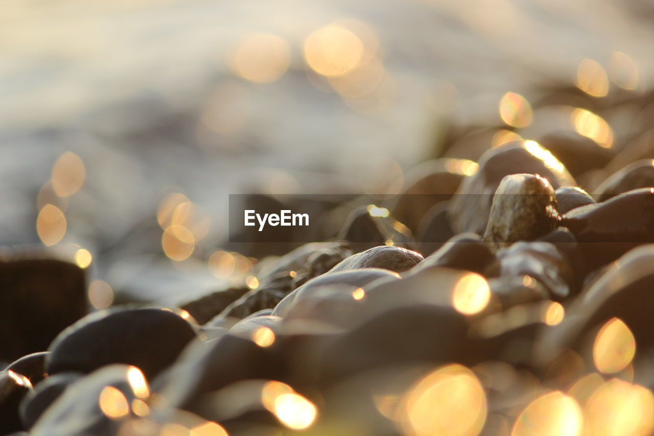 Close-up of sunlight falling on wet stones at lakeshore