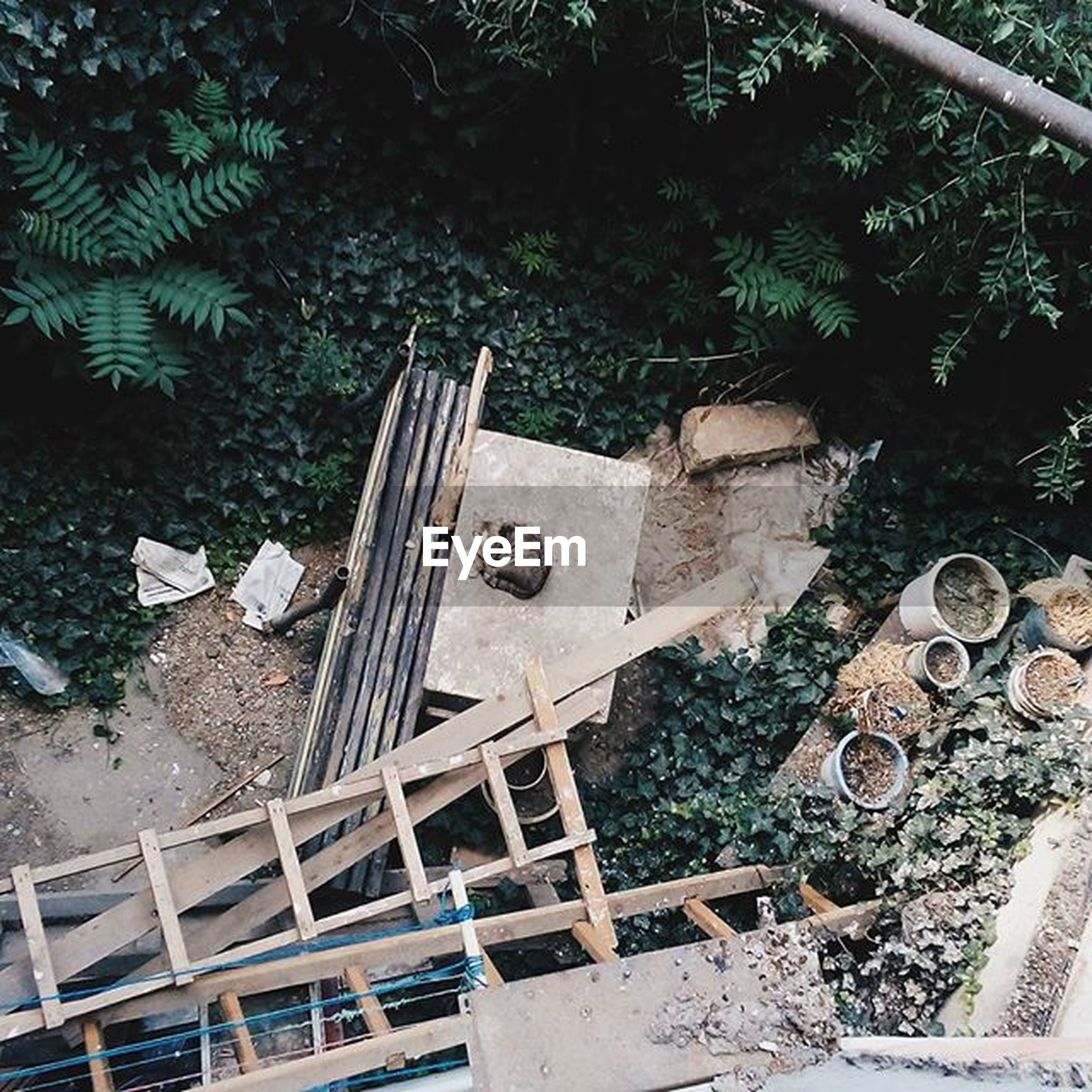 high angle view, tree, abandoned, day, old, sunlight, wood - material, metal, outdoors, built structure, no people, plant, obsolete, damaged, absence, chair, building exterior, growth, park - man made space, front or back yard