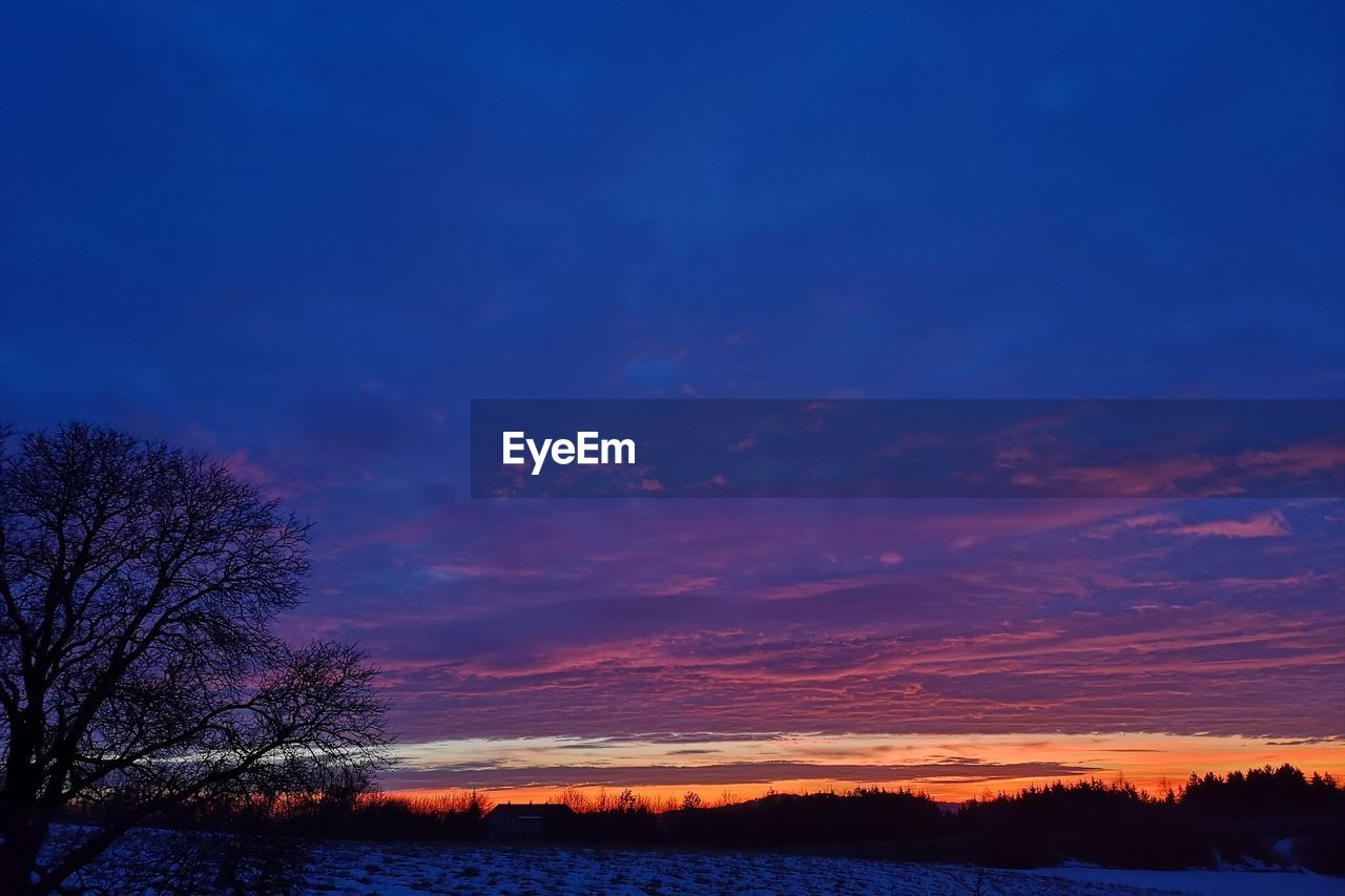 sky, beauty in nature, scenics - nature, sunset, tree, tranquil scene, cloud - sky, silhouette, tranquility, plant, no people, nature, orange color, idyllic, non-urban scene, blue, bare tree, environment, landscape, outdoors, purple
