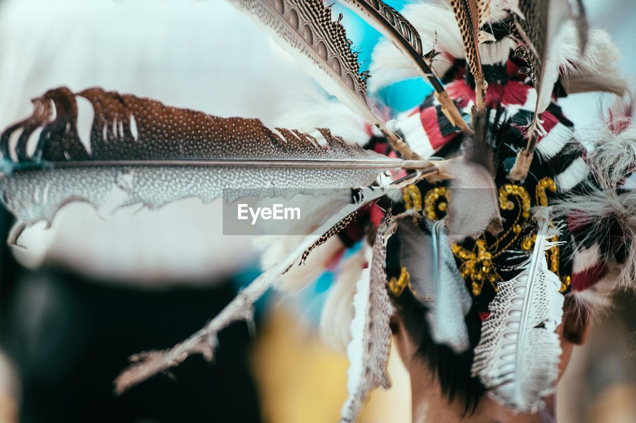 Rear View Of Person Wearing Tribal Headdress