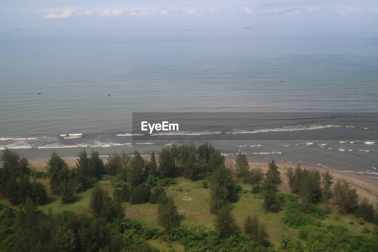 HIGH ANGLE VIEW OF TREES ON SEA SHORE AGAINST SKY
