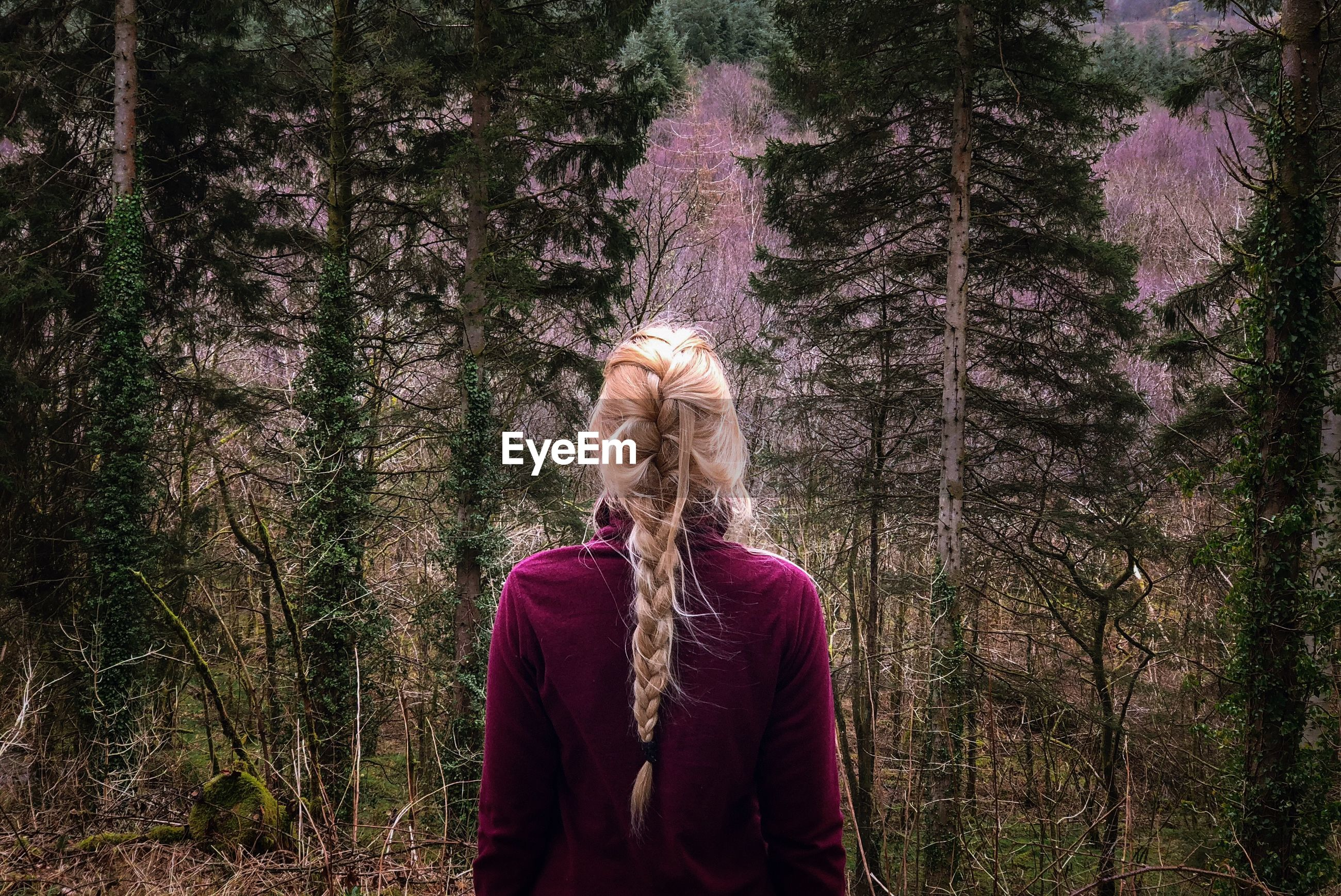 Woman with braided hair standing in forest