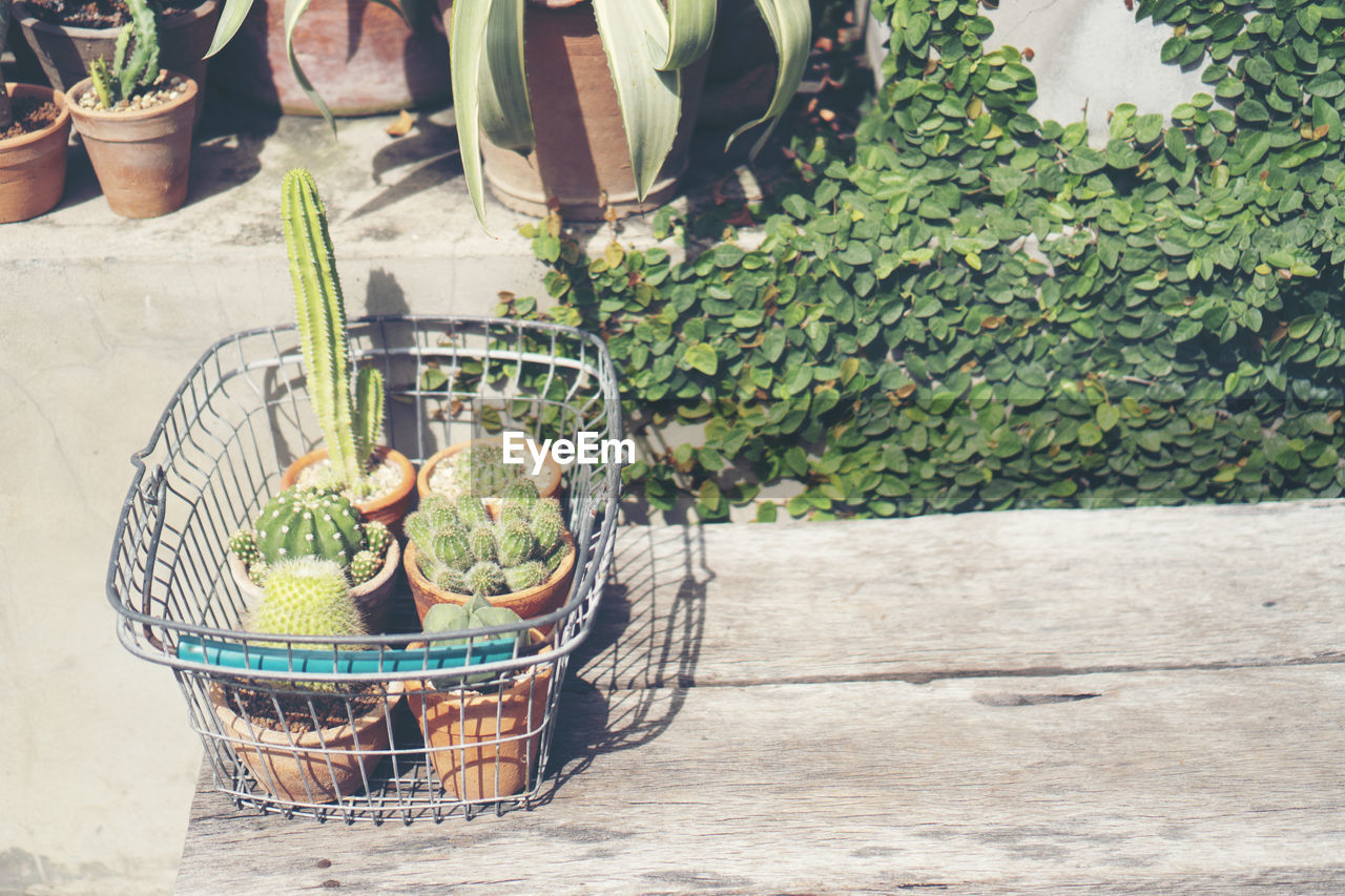 HIGH ANGLE VIEW OF VEGETABLES IN WICKER BASKET ON TABLE