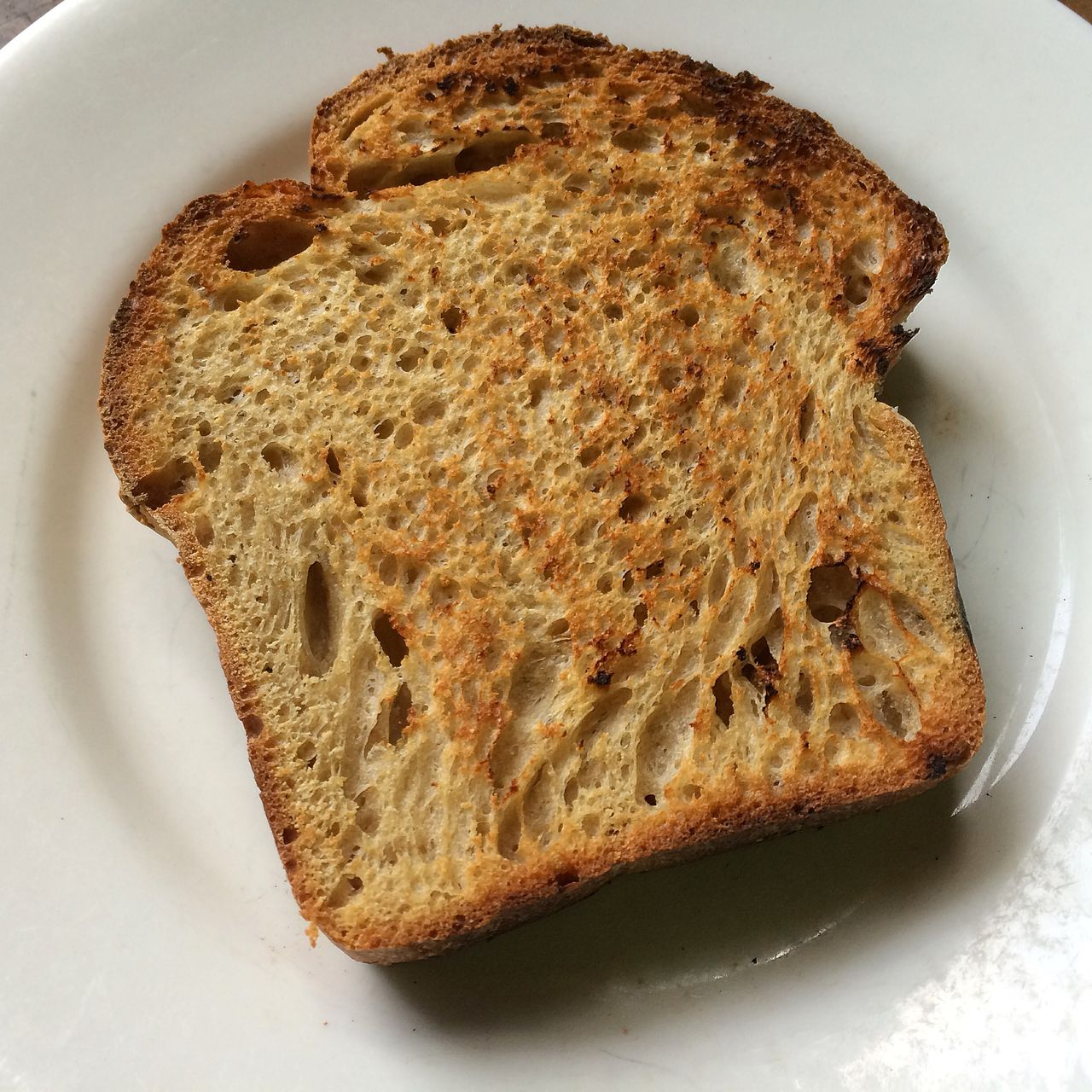 Close-up of toasted bread in plate