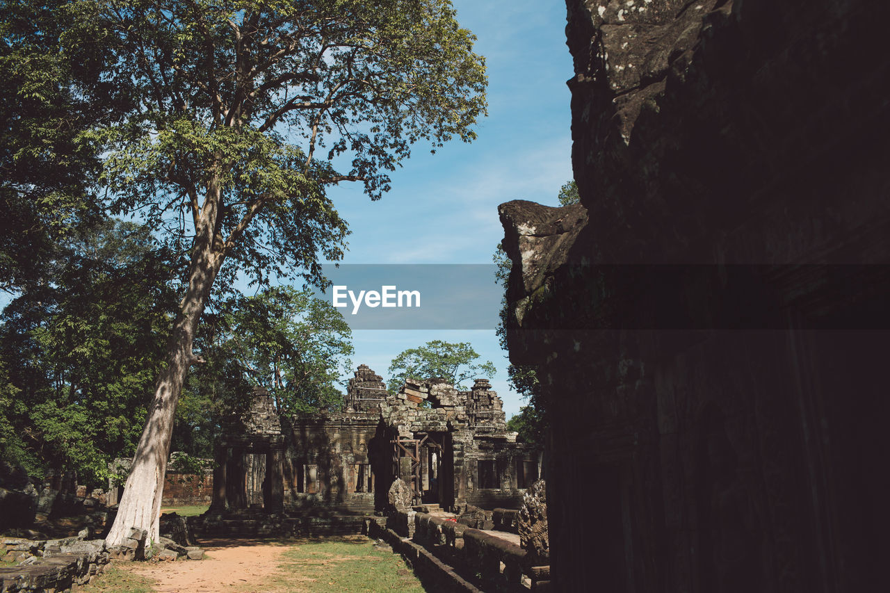 architecture, ancient, history, the past, old ruin, built structure, tree, plant, ancient civilization, old, nature, sky, day, no people, place of worship, travel destinations, travel, tourism, religion, archaeology, ruined, outdoors, deterioration, ancient history