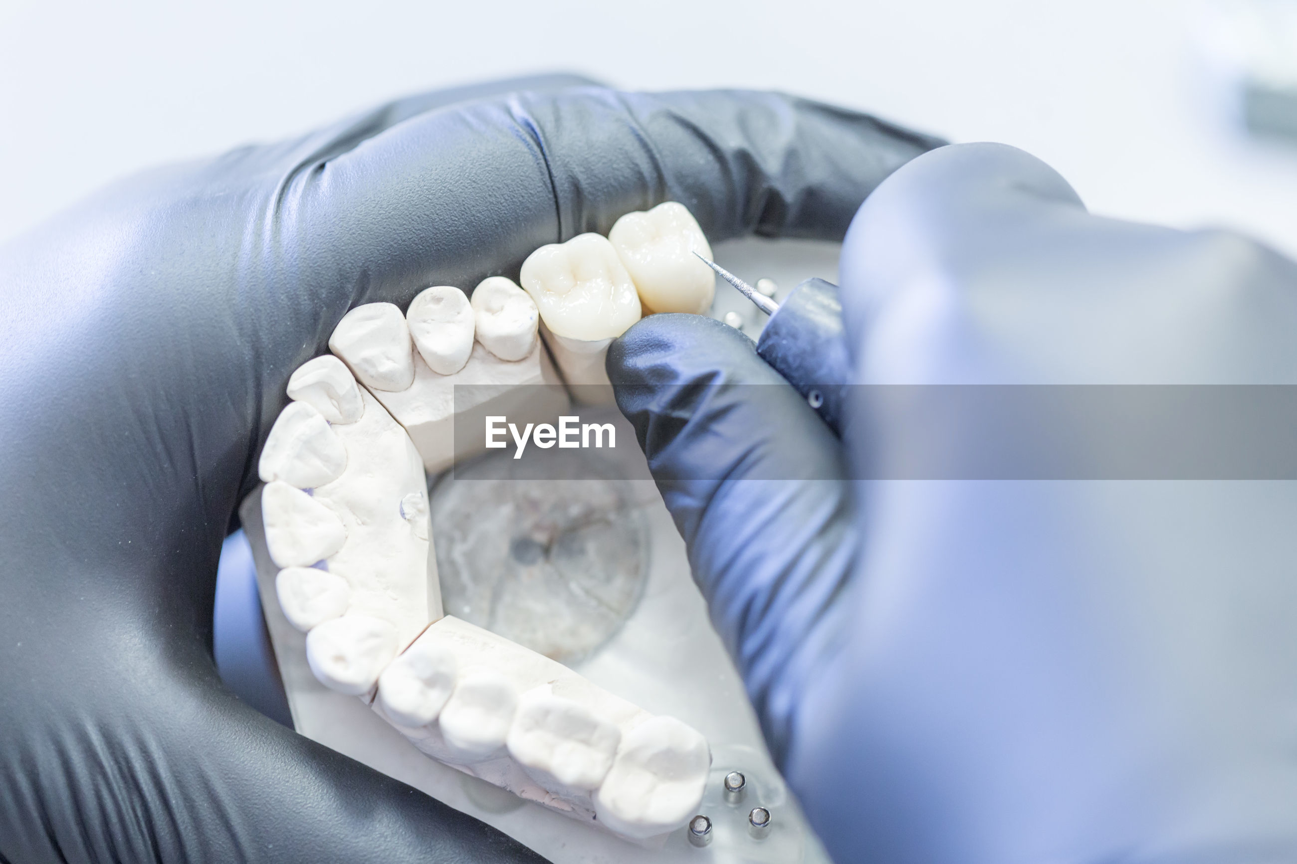 Cropped hands of dentist working on denture