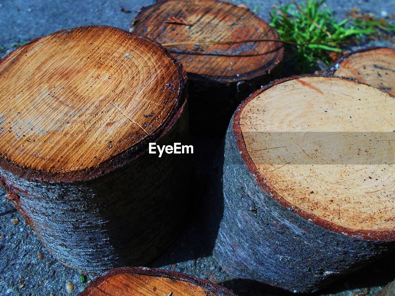 log, timber, stack, no people, wood - material, deforestation, tree ring, textured, day, close-up, outdoors, forestry industry, nature