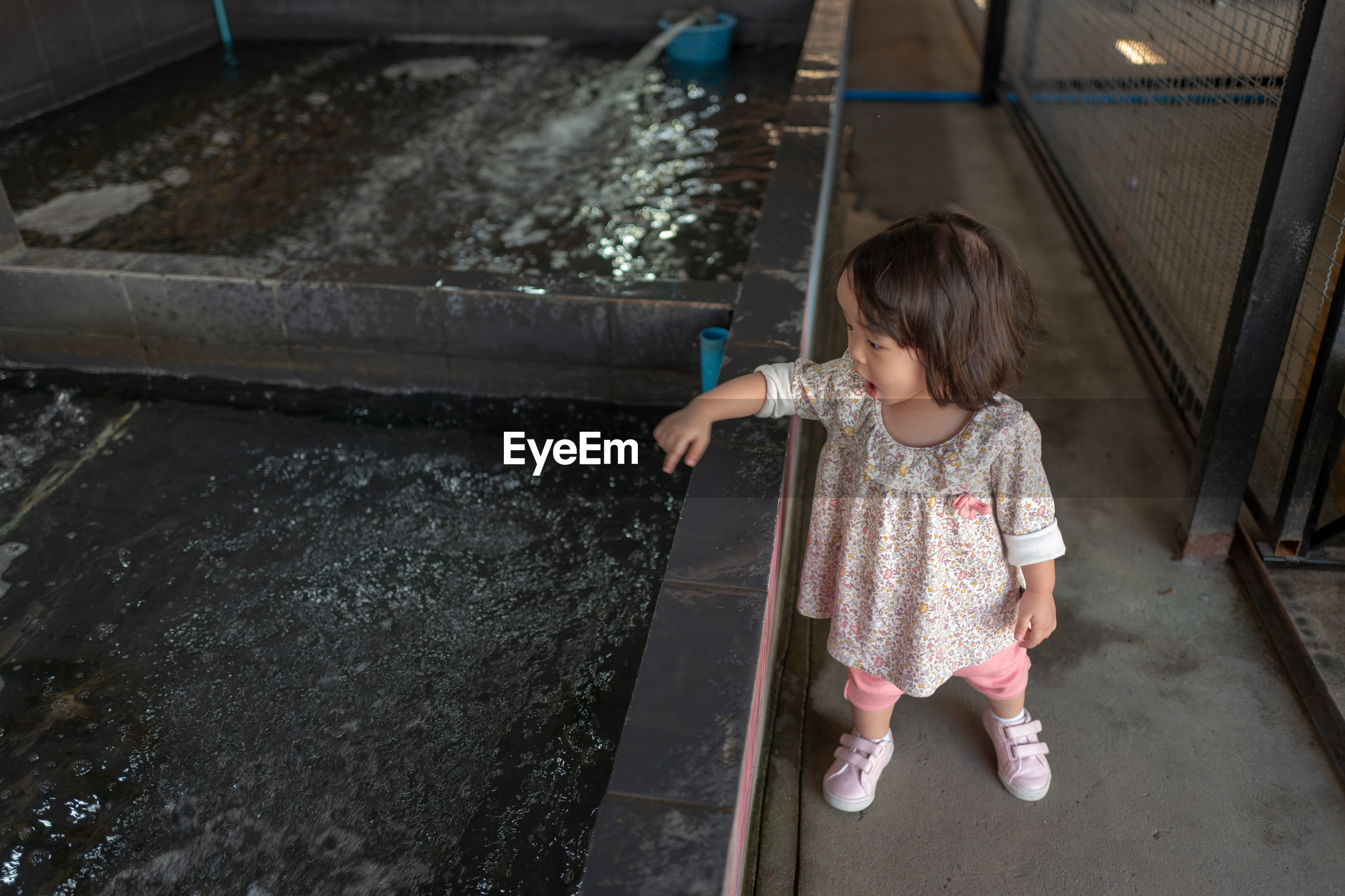 High angle view of cute baby girl pointing at artificial pond