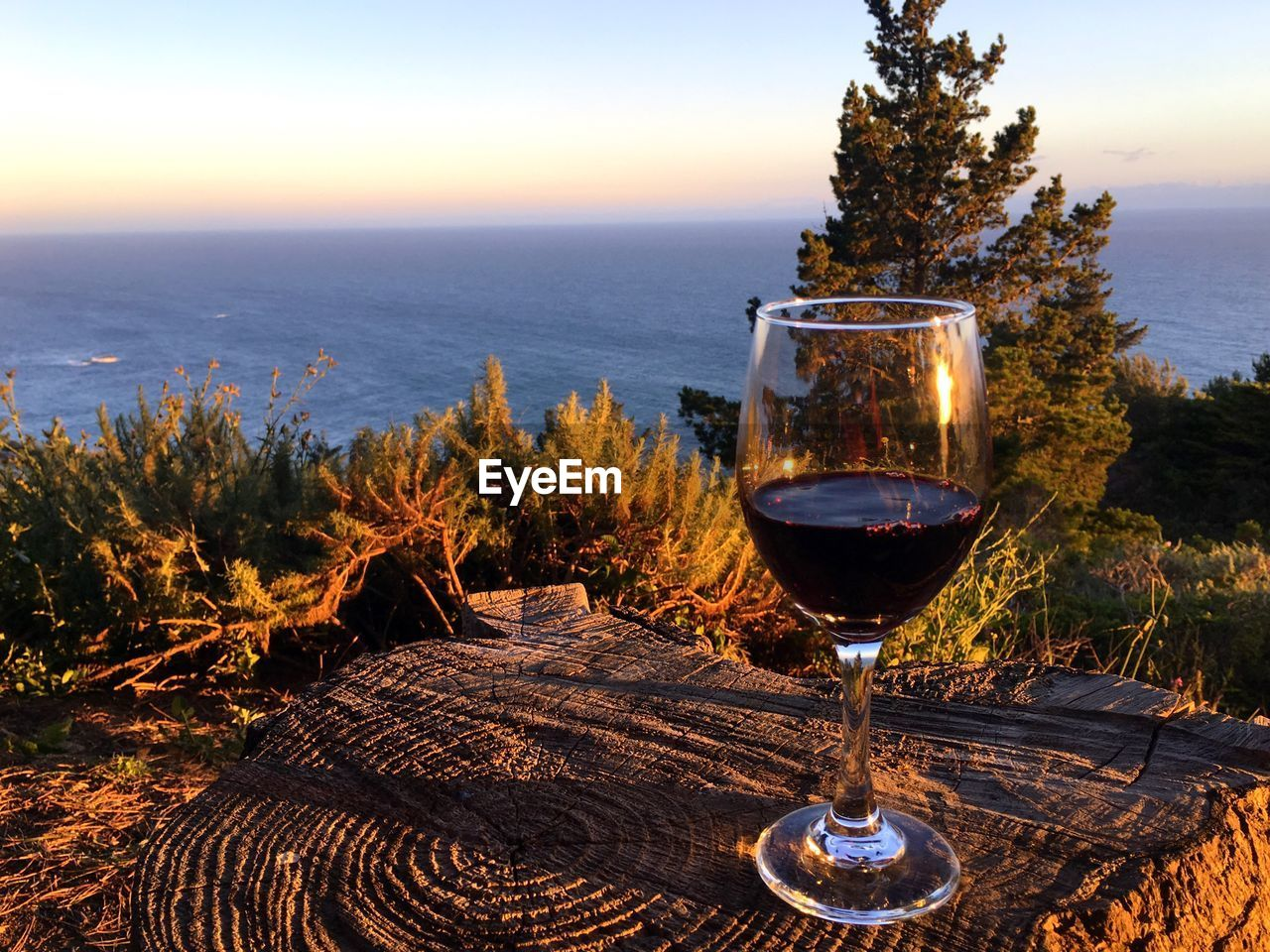 wineglass, wine, alcohol, sunset, nature, food and drink, no people, scenics, drink, outdoors, beauty in nature, tree, drinking glass, sea, sky, water, day, horizon over water, freshness, close-up