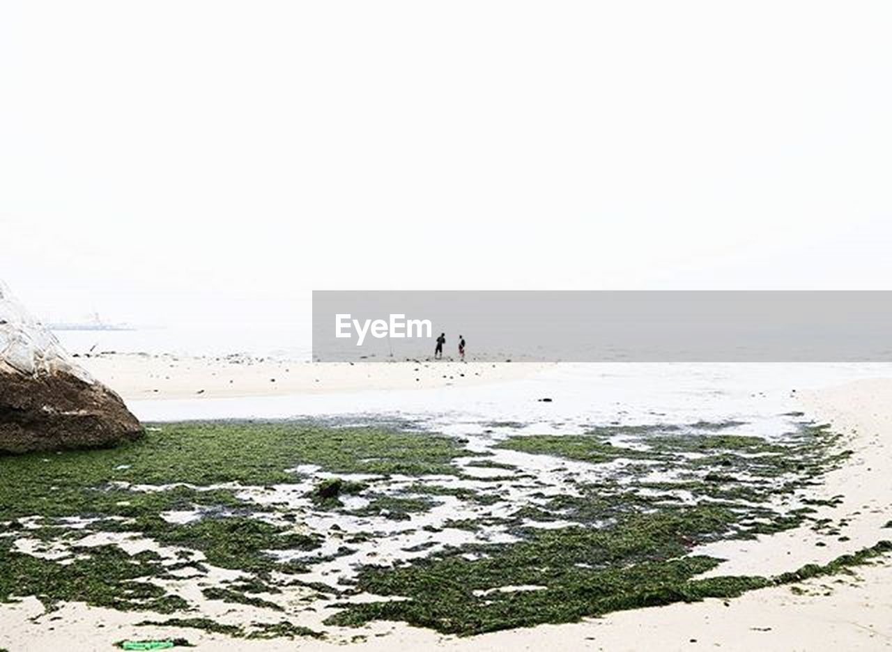 sea, beach, outdoors, nature, tranquility, dog, horizon over water, sand, beauty in nature, full length, scenics, day, people, water, animal themes, pets, adult, sky, one man only, only men, mammal