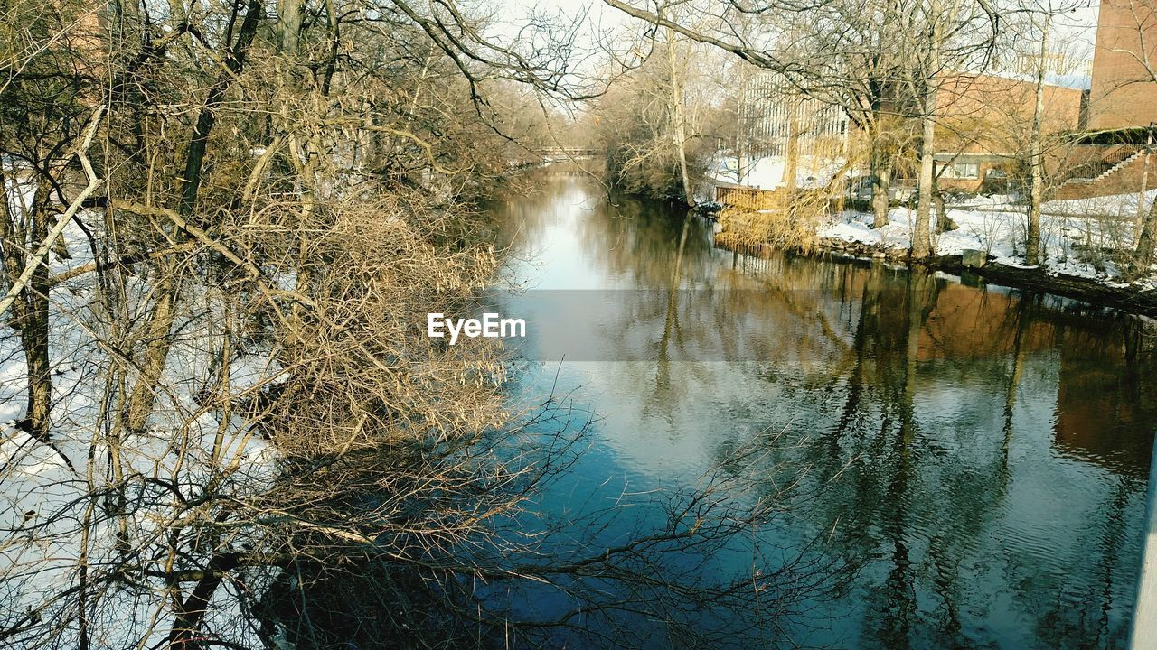 tree, bare tree, water, river, nature, branch, beauty in nature, no people, tranquil scene, day, outdoors, tranquility, scenics