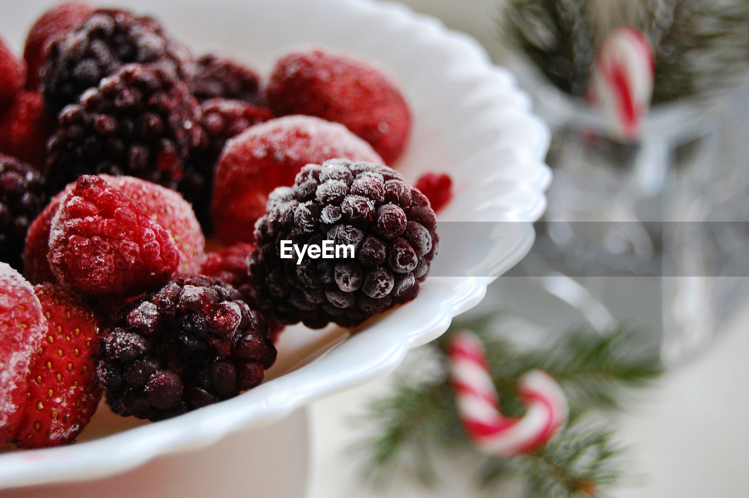 Close-up of berries in bowl