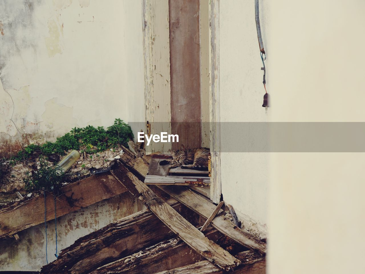 wood - material, no people, architecture, day, old, built structure, metal, wall - building feature, abandoned, outdoors, entrance, damaged, deterioration, door, decline, obsolete, run-down, nature, weathered, ruined