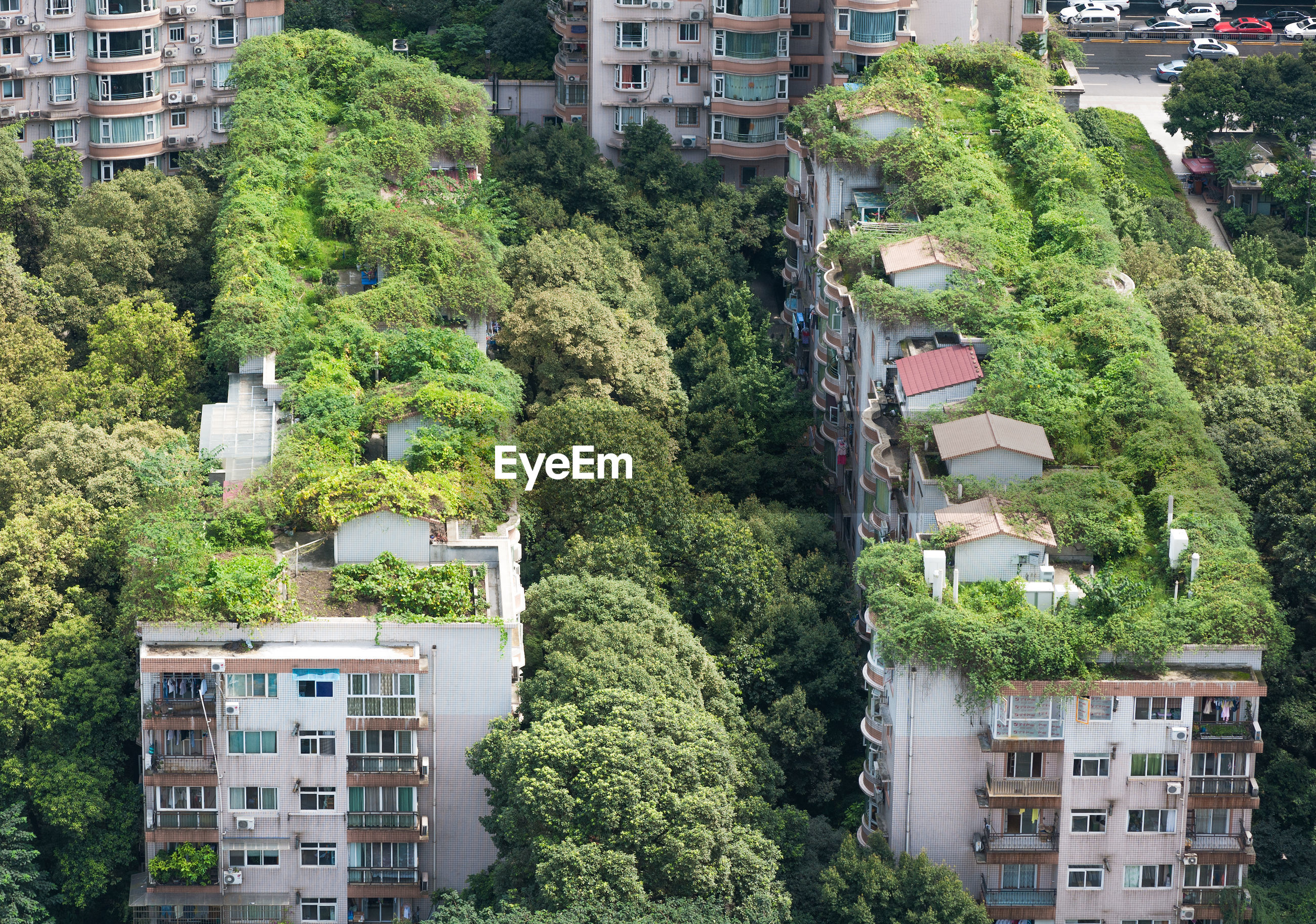 HIGH ANGLE VIEW OF TREES AND CITYSCAPE