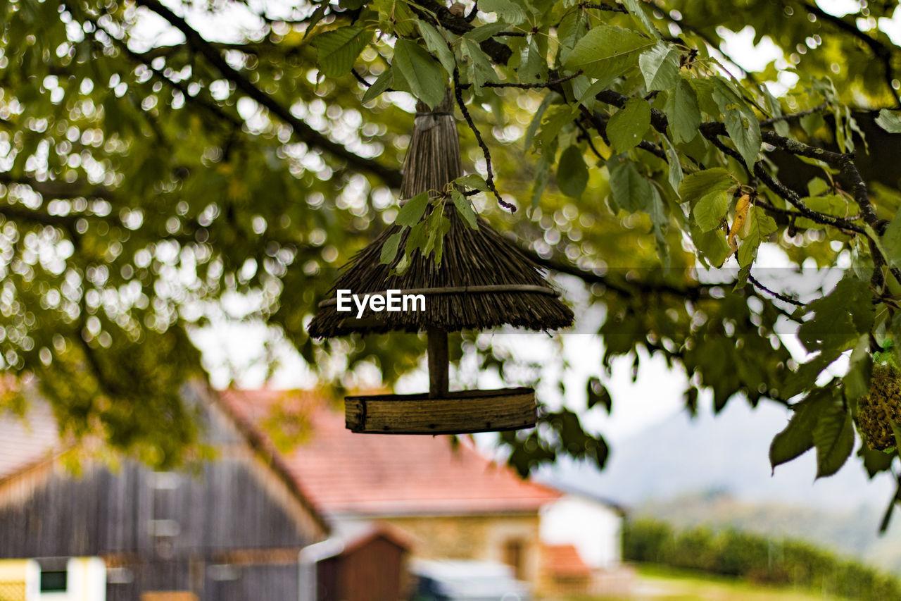 View of bird feeder on in a barn yard