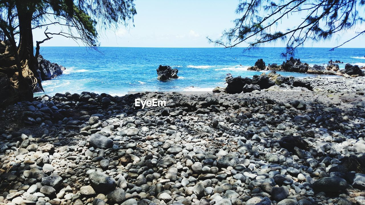 water, sea, rock, beach, solid, land, sky, horizon, beauty in nature, horizon over water, rock - object, scenics - nature, nature, day, tree, stone, stone - object, tranquil scene, tranquility, pebble, outdoors, no people, rocky coastline