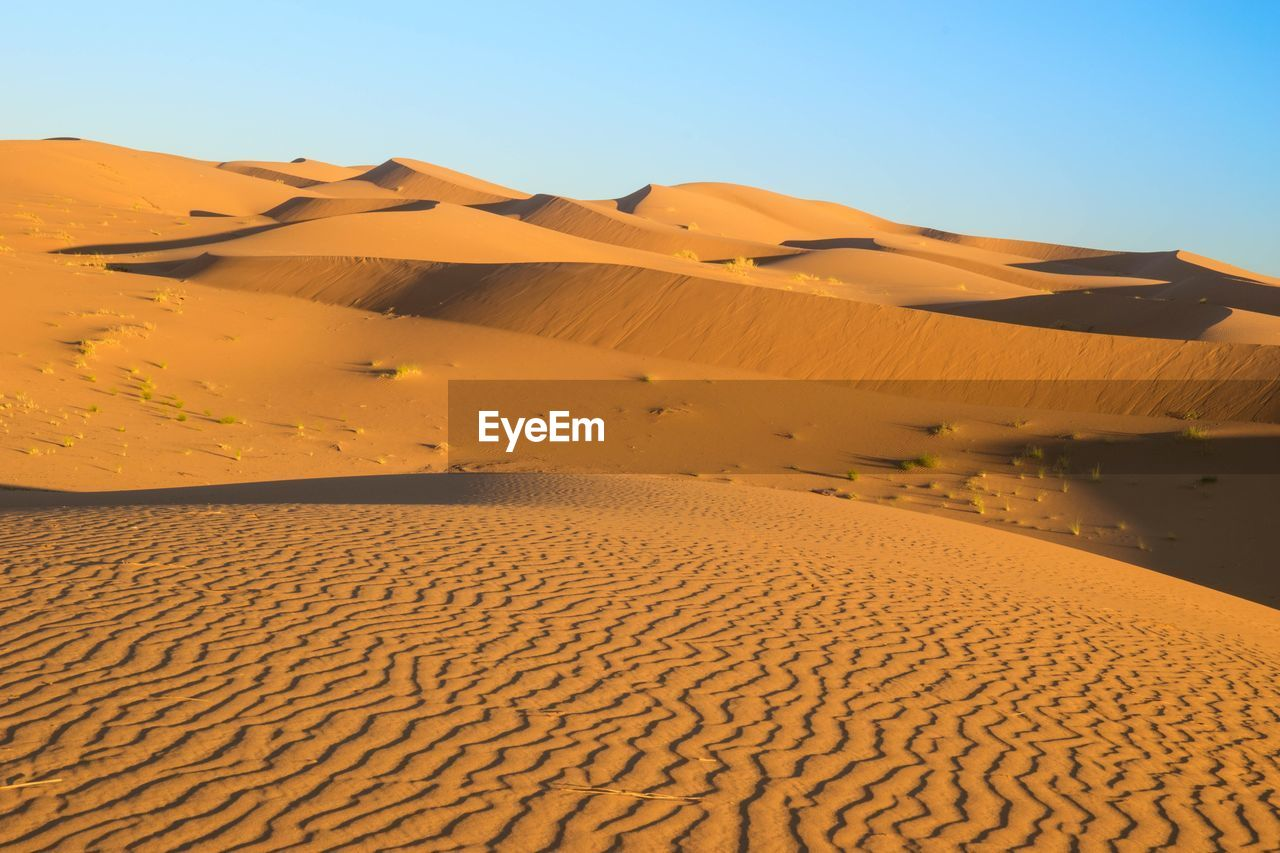 SCENIC VIEW OF SAND DUNES AGAINST CLEAR SKY