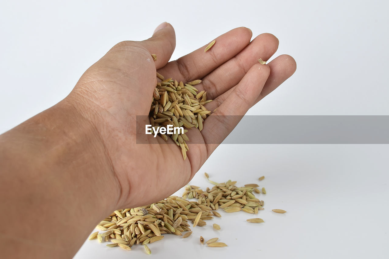 human hand, food and drink, hand, white background, human body part, food, studio shot, holding, one person, indoors, freshness, plant, unrecognizable person, wellbeing, healthy eating, seed, close-up, herb, raw food, finger