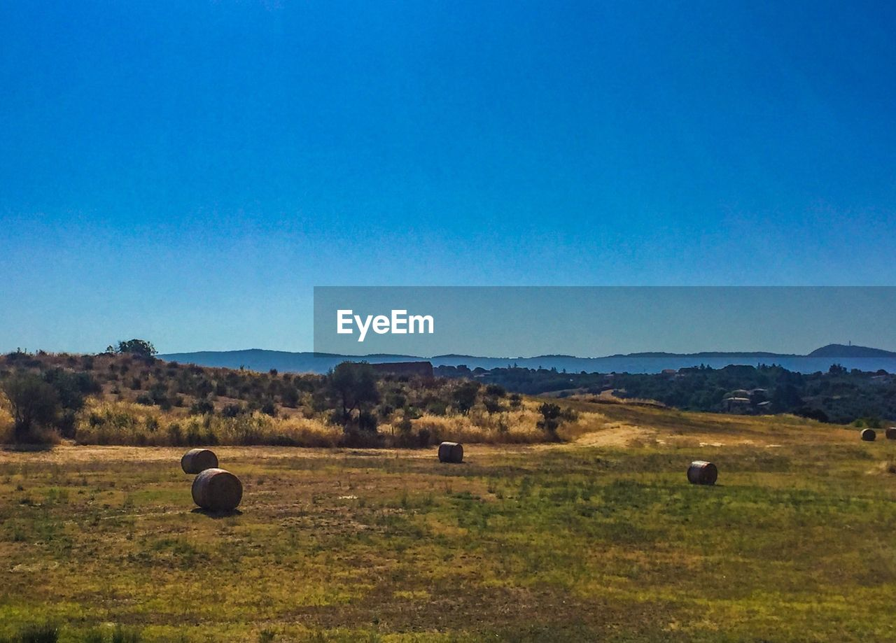 sky, environment, landscape, land, scenics - nature, copy space, blue, nature, beauty in nature, field, tranquil scene, plant, no people, clear sky, tranquility, grass, hay, day, bale, rural scene, outdoors