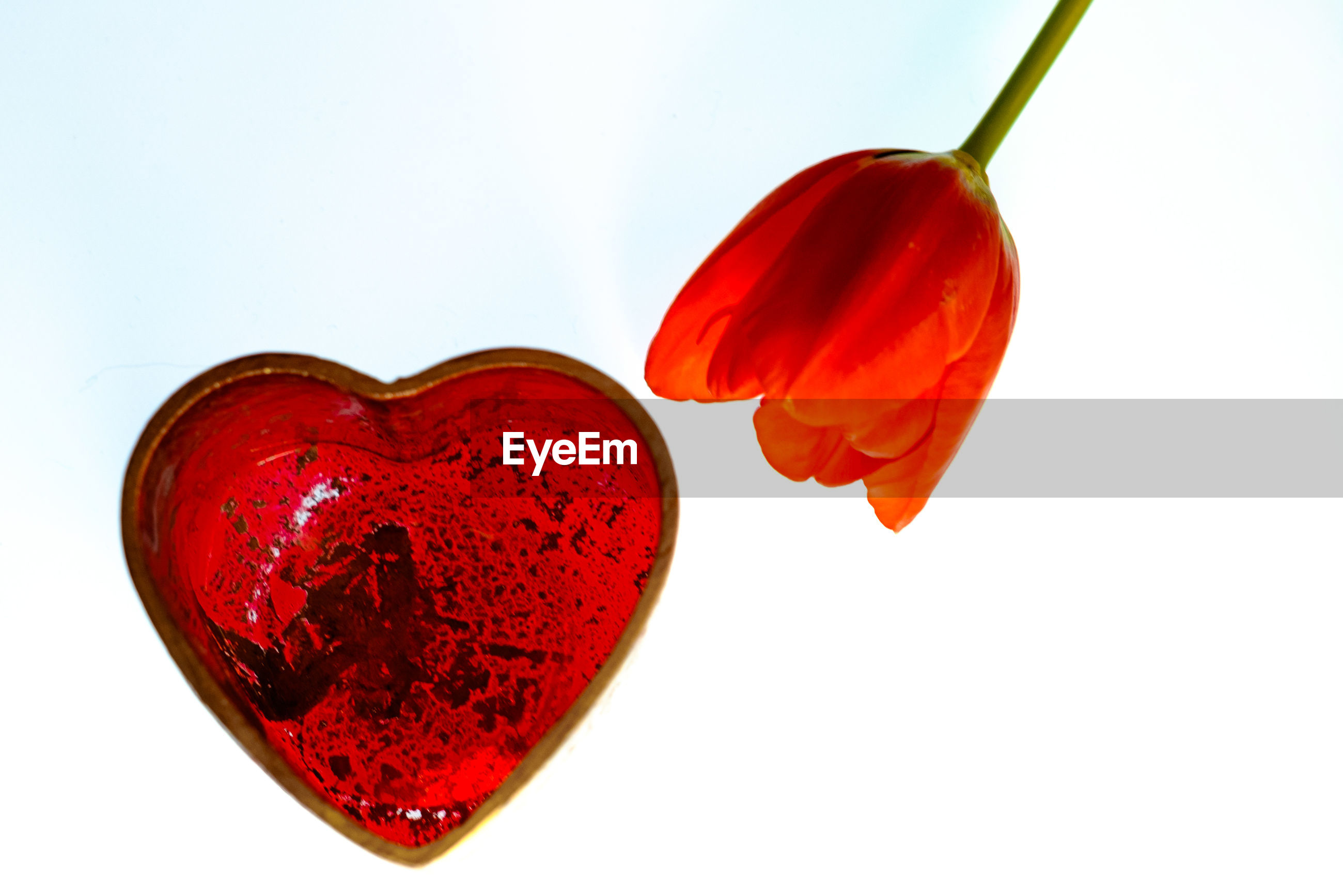 Close-up of heart shape with flower against blue background