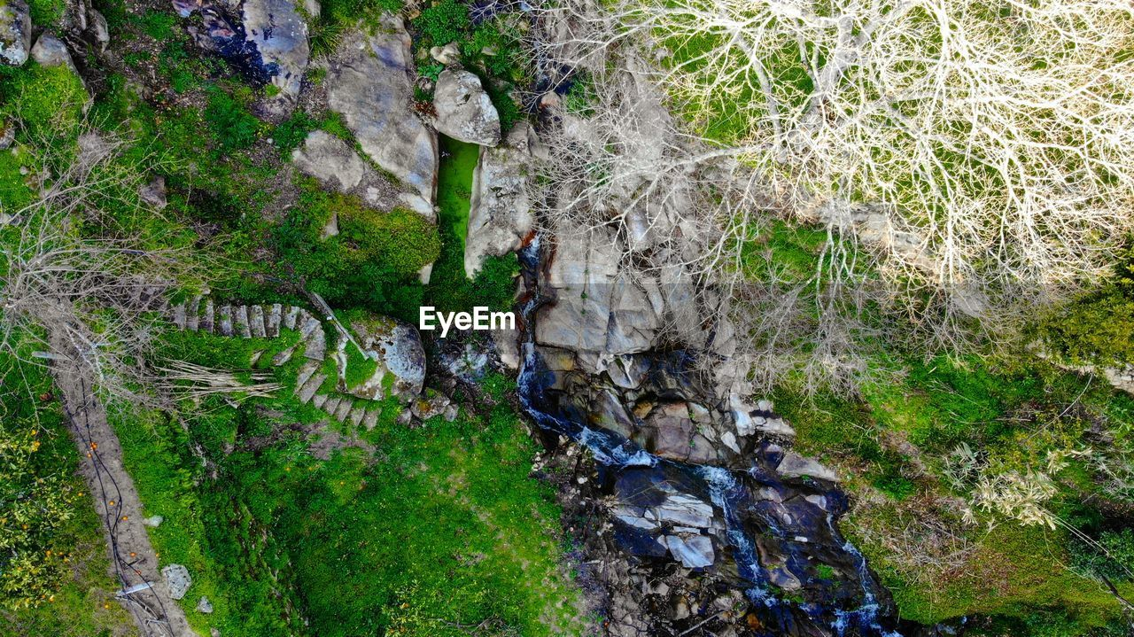 rock - object, high angle view, nature, hiking, outdoors, adventure, tree, moss, river, waterfall, forest, day, water, climbing, growth, beauty in nature, one person, grass, people