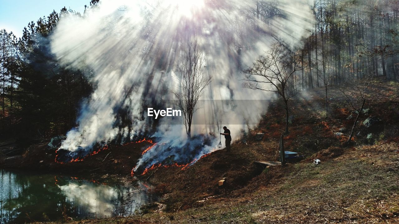 Man Standing By Forest Fire