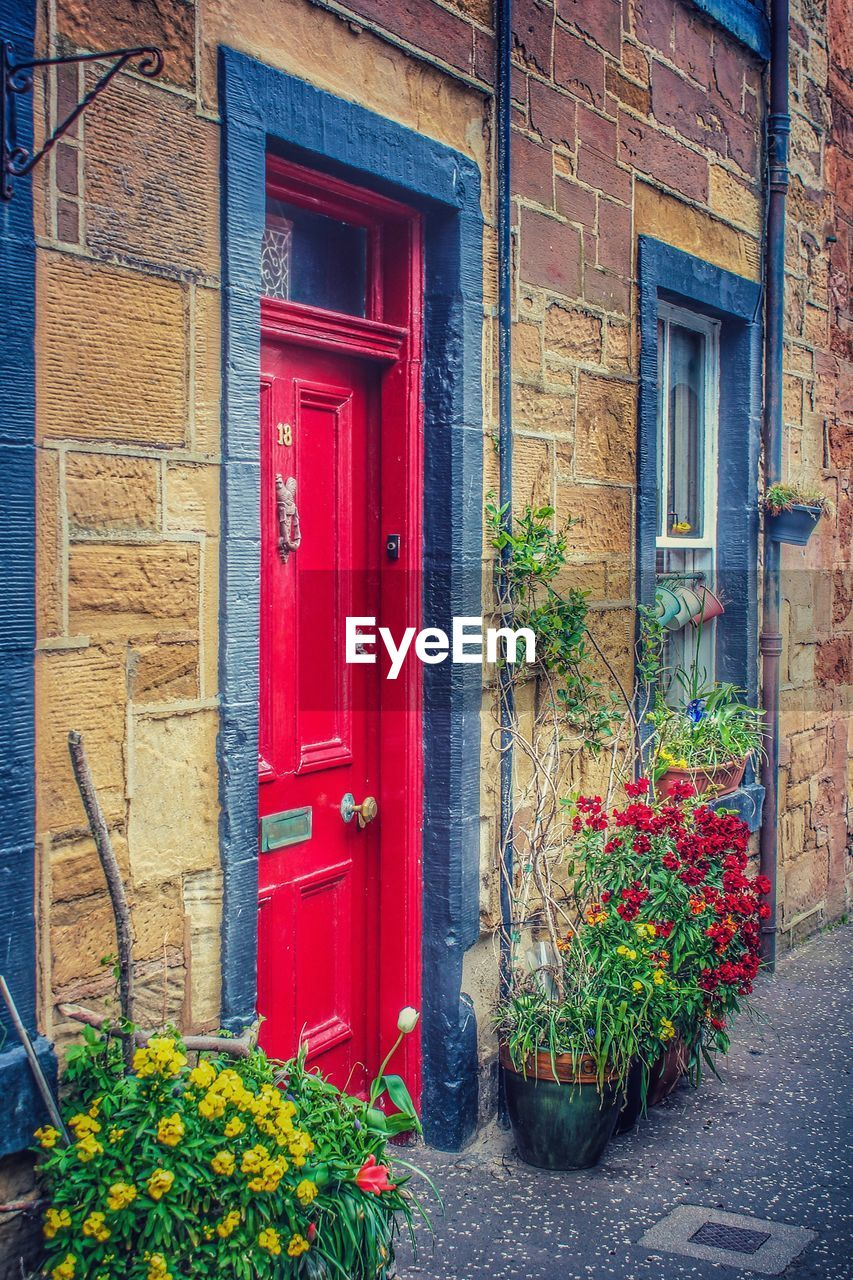 building exterior, architecture, built structure, building, plant, entrance, house, red, no people, day, door, flower, flowering plant, window, nature, outdoors, growth, closed, wall, residential district