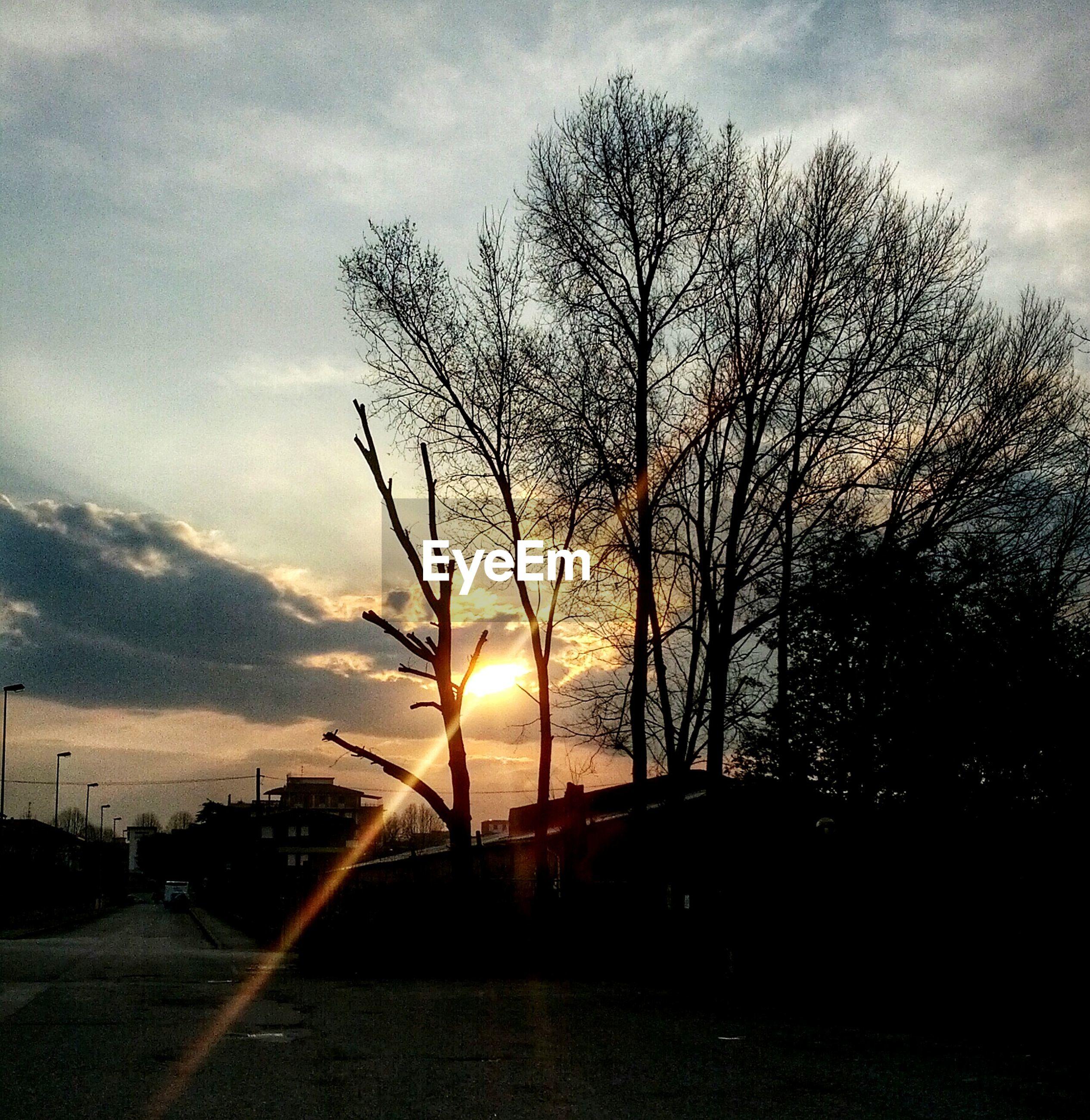 tree, sun, sunset, silhouette, sky, bare tree, sunlight, sunbeam, cloud - sky, tranquility, branch, road, lens flare, tranquil scene, nature, back lit, scenics, beauty in nature, cloud, transportation