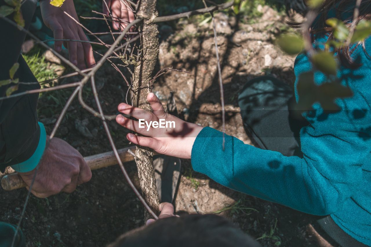 human hand, holding, hand, plant, real people, nature, tree, human body part, people, day, land, men, lifestyles, selective focus, stick - plant part, leisure activity, outdoors, two people, adult, finger