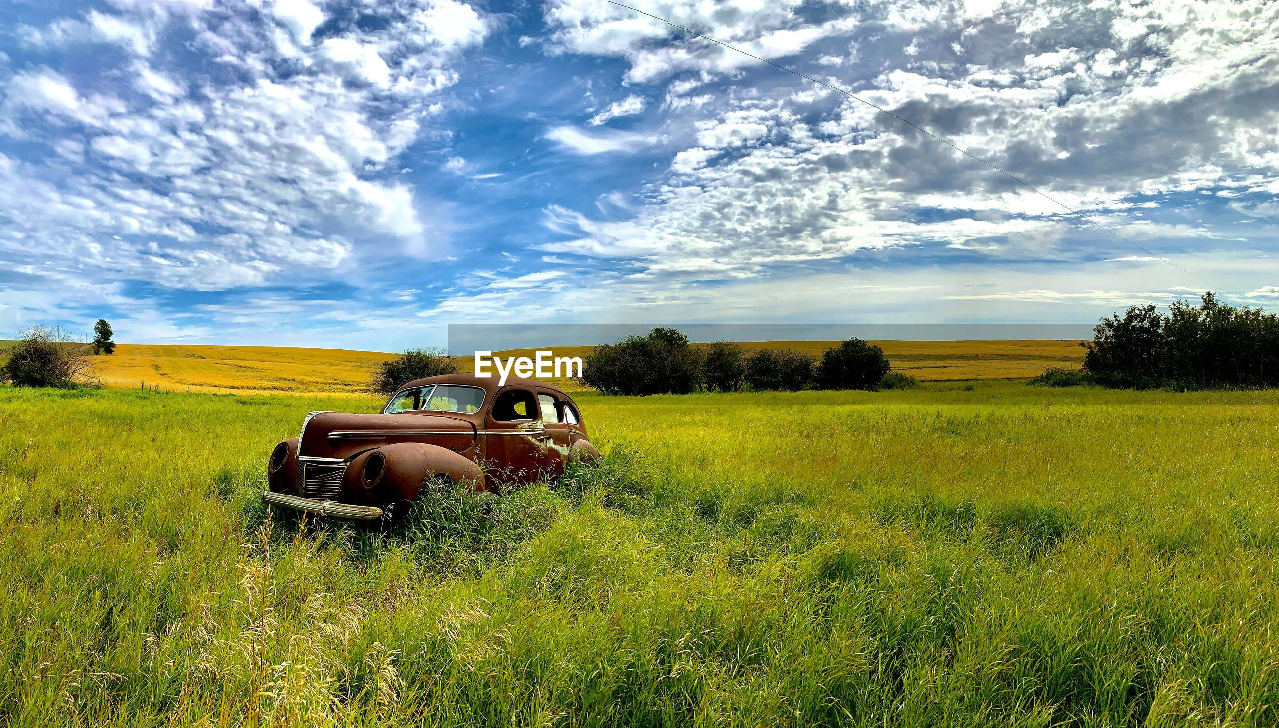 Car parked on field against sky