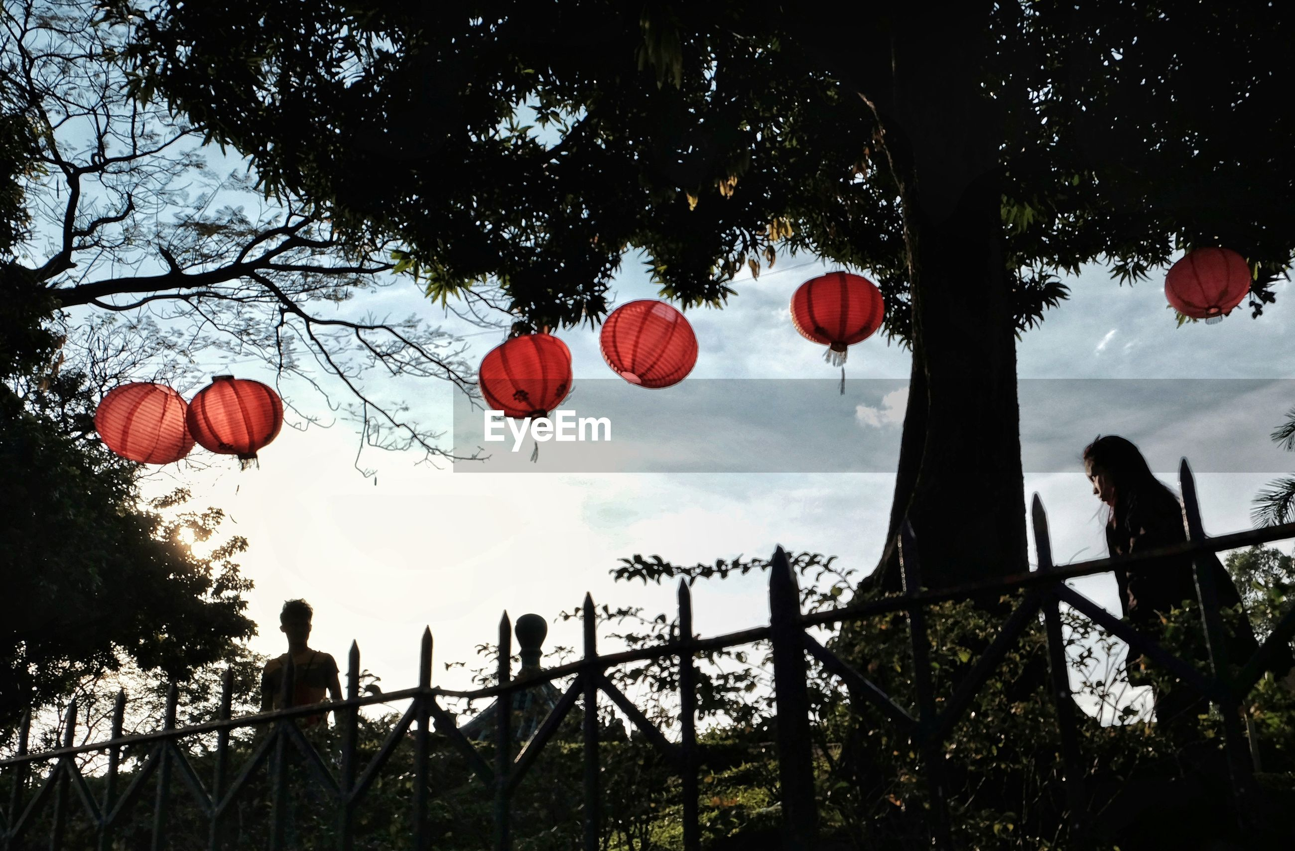 LOW ANGLE VIEW OF LANTERN AGAINST TREES