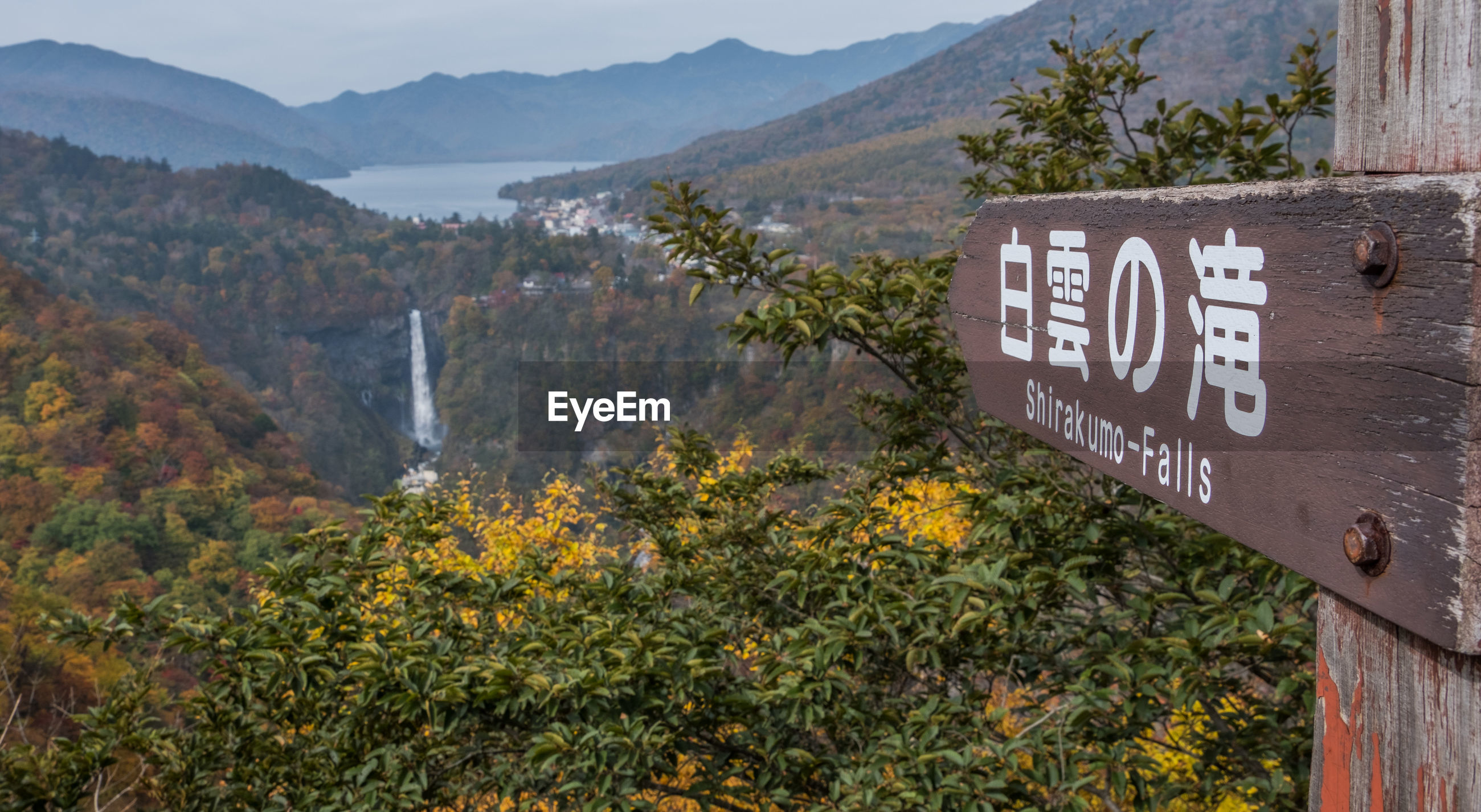 Close-up of signboard by waterfall amidst tree and mountain