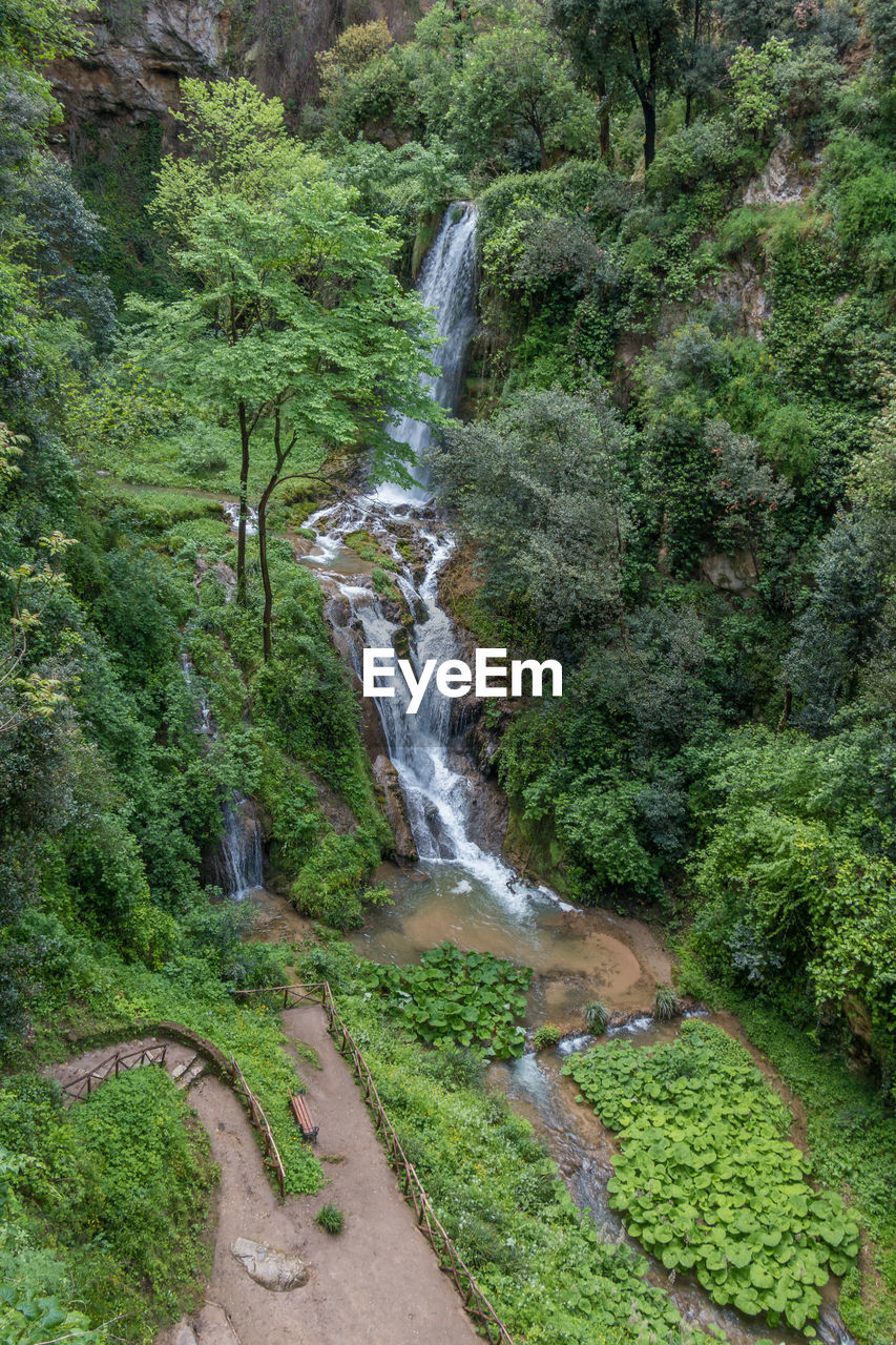 plant, tree, water, land, forest, motion, scenics - nature, nature, beauty in nature, environment, waterfall, flowing water, green color, growth, blurred motion, long exposure, lush foliage, foliage, day, no people, outdoors, flowing, stream - flowing water, rainforest, falling water, power in nature