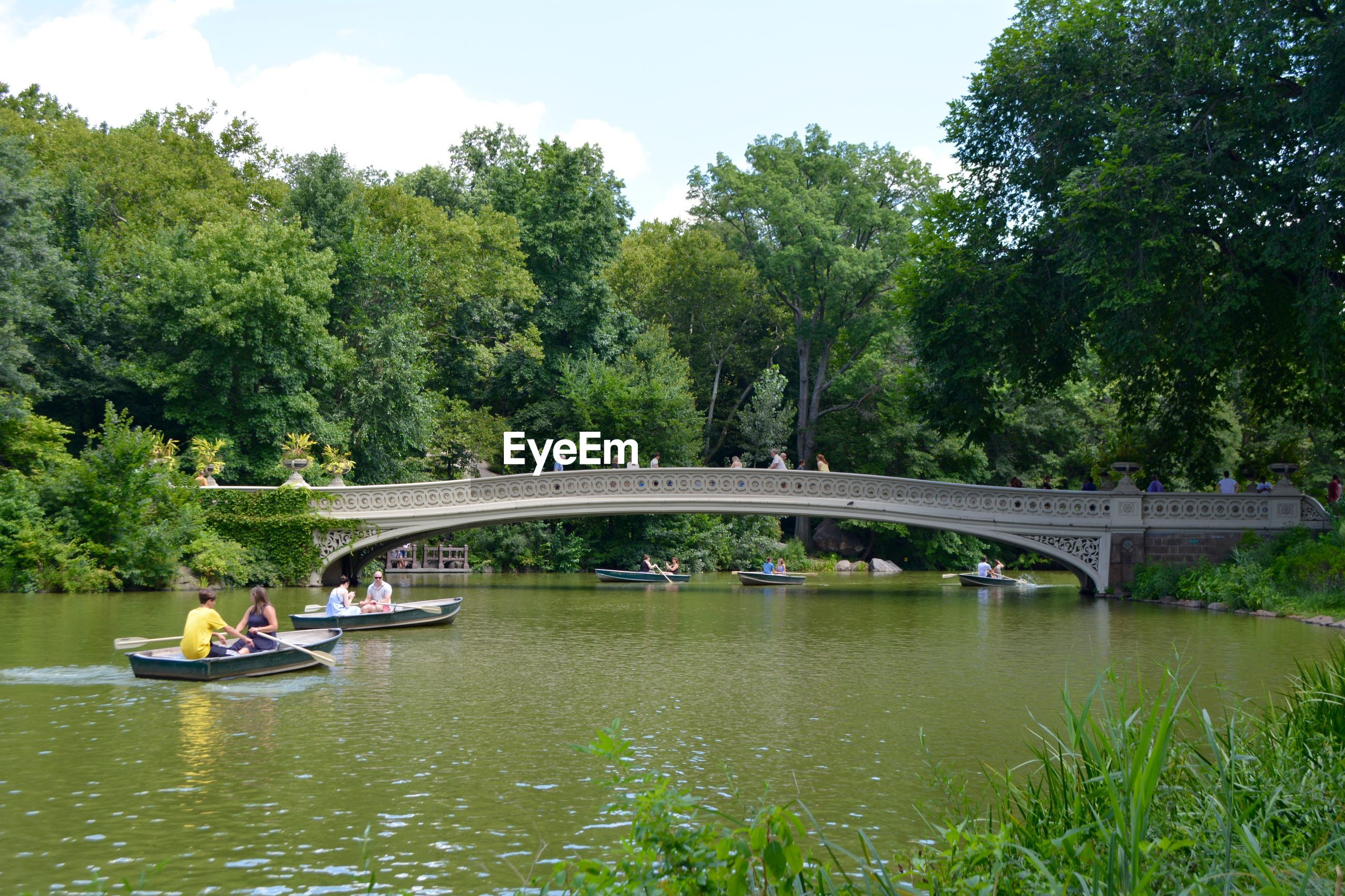 VIEW OF BRIDGE OVER RIVER AGAINST TREES