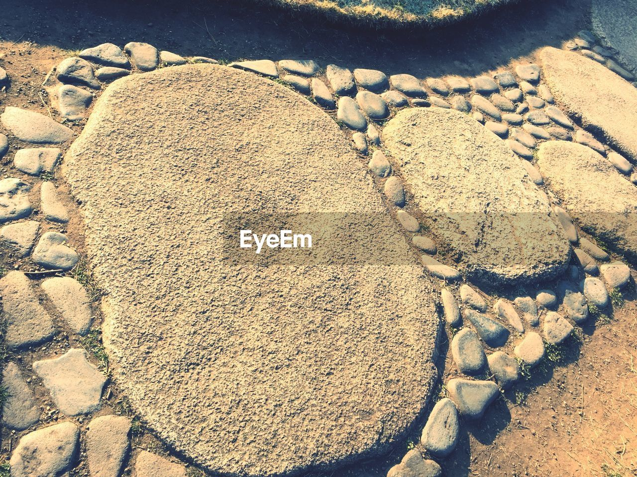 sand, beach, food and drink, food, high angle view, no people, day, freshness, nature, outdoors, sweet food, close-up, salt - mineral