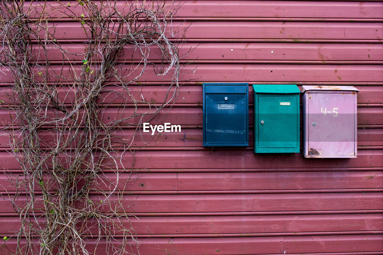 Colorful mailboxes by dried plants on wall