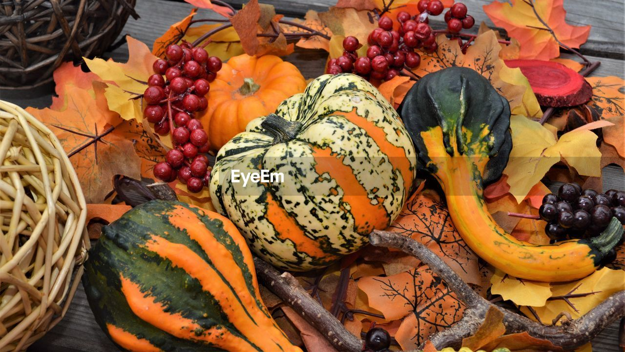 food and drink, food, healthy eating, freshness, wellbeing, fruit, pumpkin, no people, orange color, vegetable, choice, still life, variation, squash - vegetable, high angle view, raw food, close-up, market, gourd, large group of objects, ripe