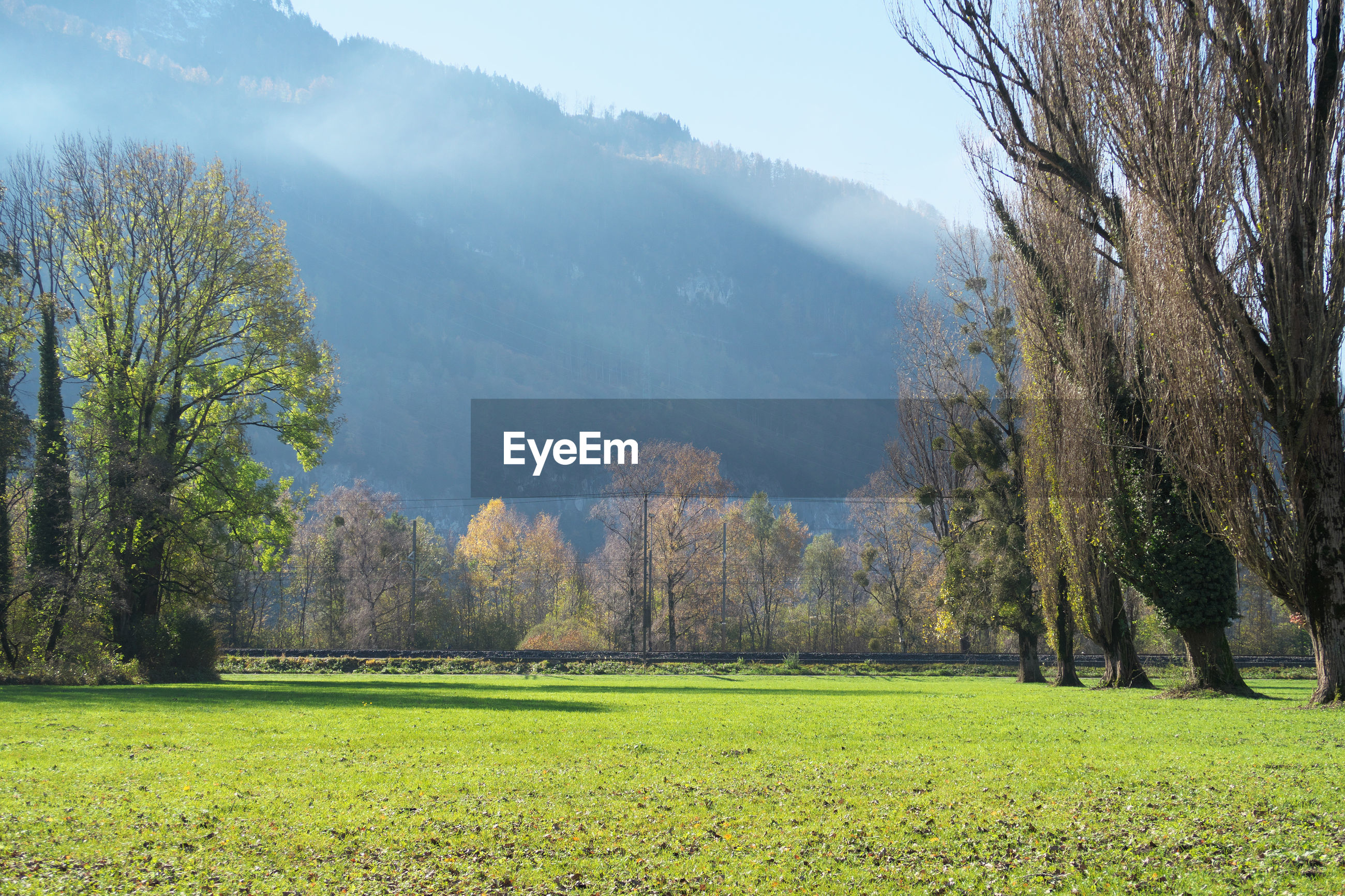 SCENIC VIEW OF FIELD AGAINST TREES AND MOUNTAINS