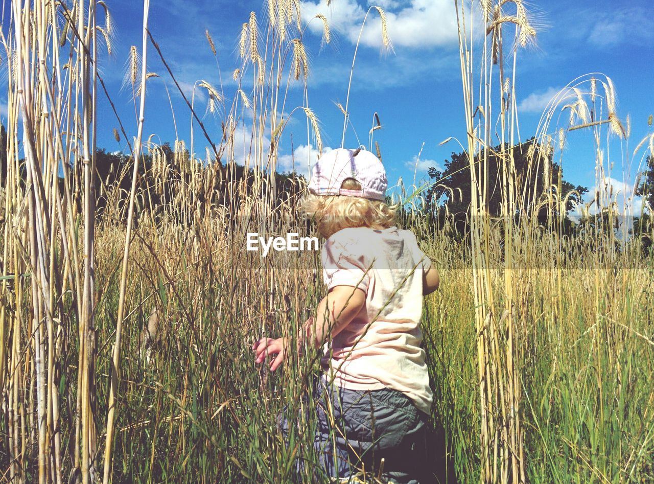 Rear View Of Child Amidst Cereal Plants On Agricultural Field During Sunny Day