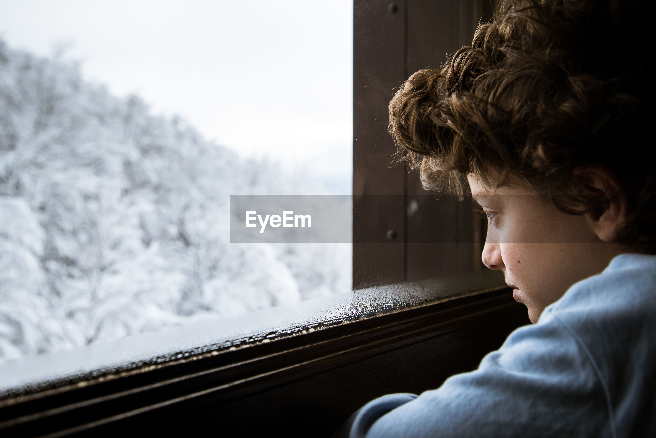 Close-up of boy looking through window