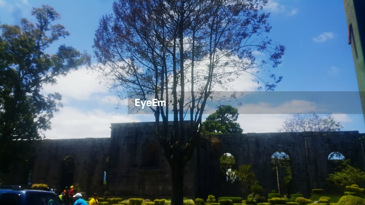 tree, architecture, sky, plant, cloud - sky, nature, built structure, building exterior, no people, car, outdoors, day, transportation, motor vehicle, mode of transportation, city, building, growth, land vehicle, the past