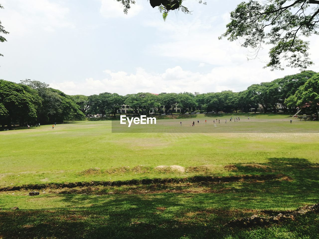 plant, tree, grass, sport, sky, cloud - sky, green color, day, nature, beauty in nature, land, tranquility, environment, outdoors, field, landscape, tranquil scene, leisure activity, park, playing