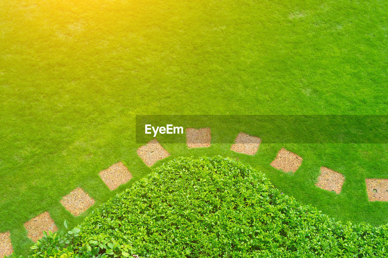green color, grass, plant, nature, no people, lawn, formal garden, stepping stone, day, park, high angle view, garden, park - man made space, outdoors, copy space, growth, field, front or back yard, backgrounds, land, ornamental garden, hedge