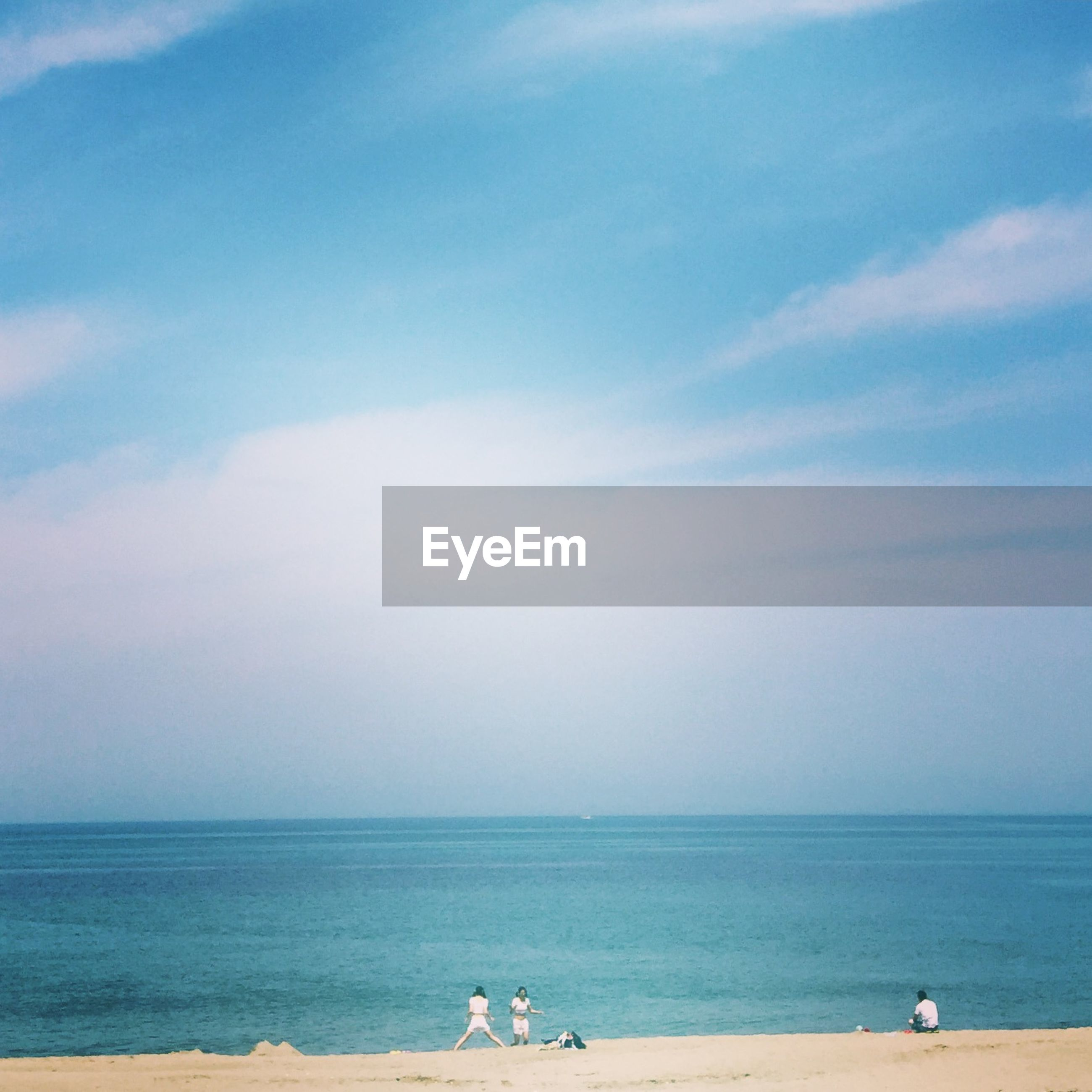 sea, horizon over water, beach, water, animal themes, sky, shore, scenics, tranquility, tranquil scene, beauty in nature, sand, nature, leisure activity, one animal, vacations, lifestyles, blue, idyllic