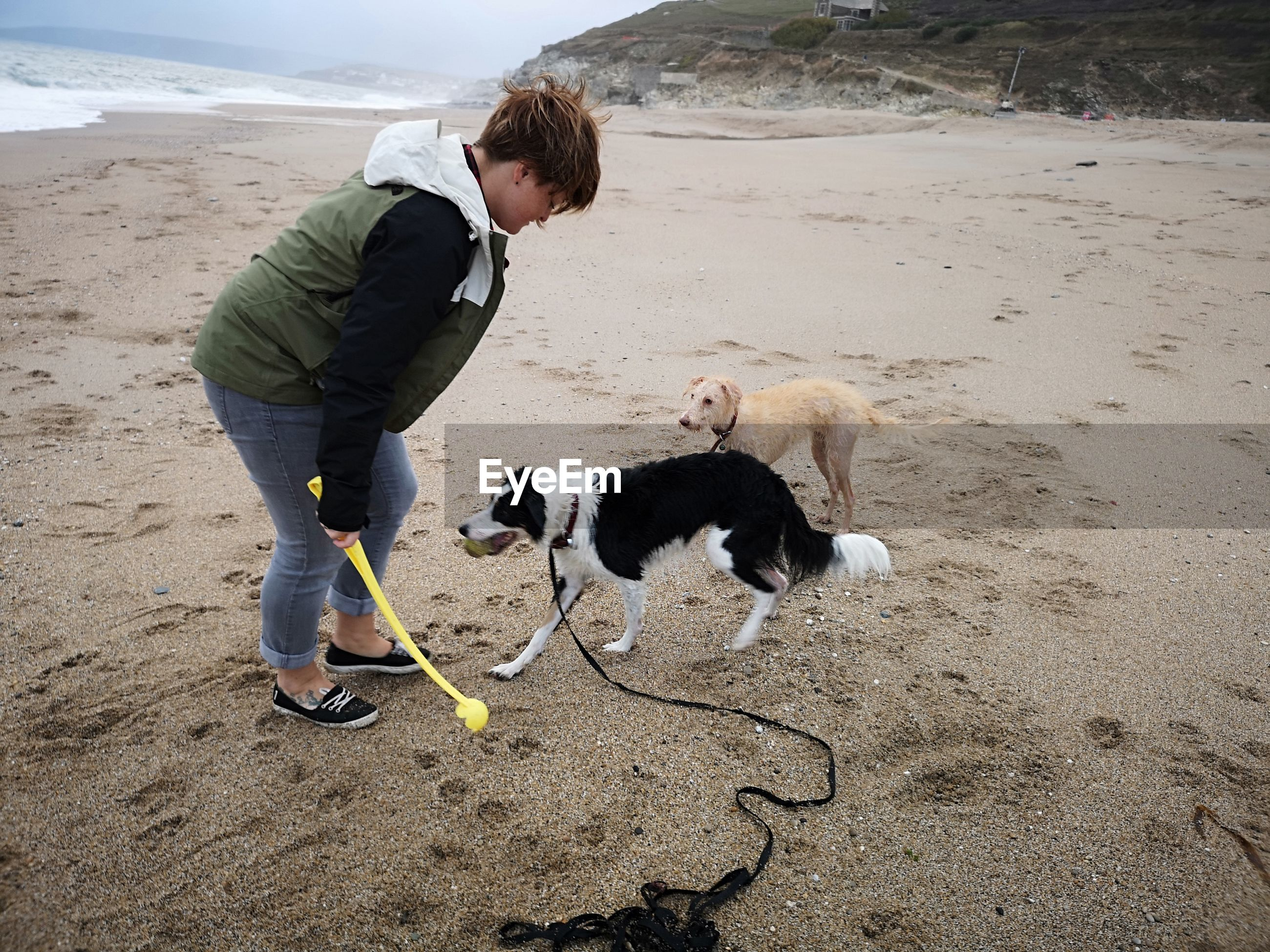Woman playing dogs at beach