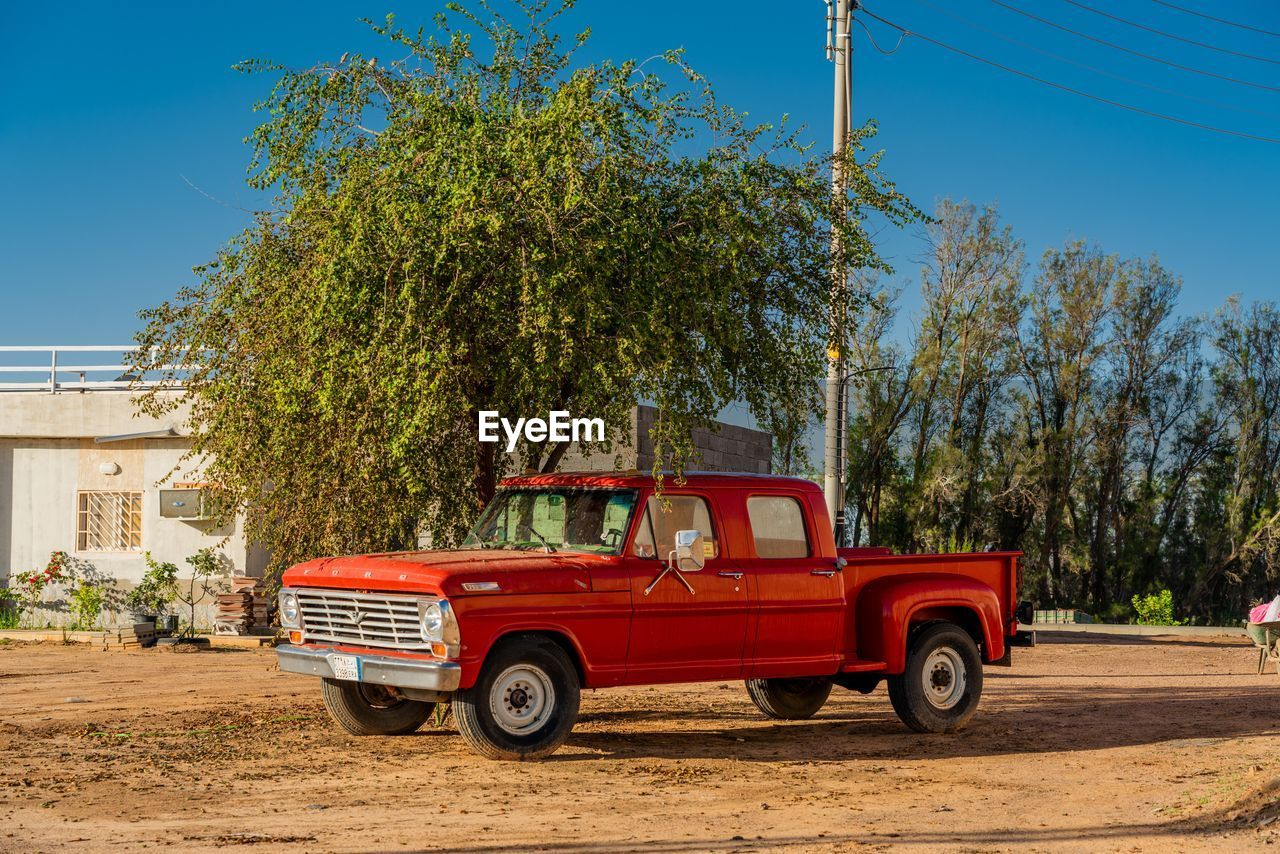 tree, transportation, mode of transportation, plant, land vehicle, sky, nature, day, architecture, motor vehicle, city, road, sunlight, red, growth, outdoors, street, pick-up truck, car, no people
