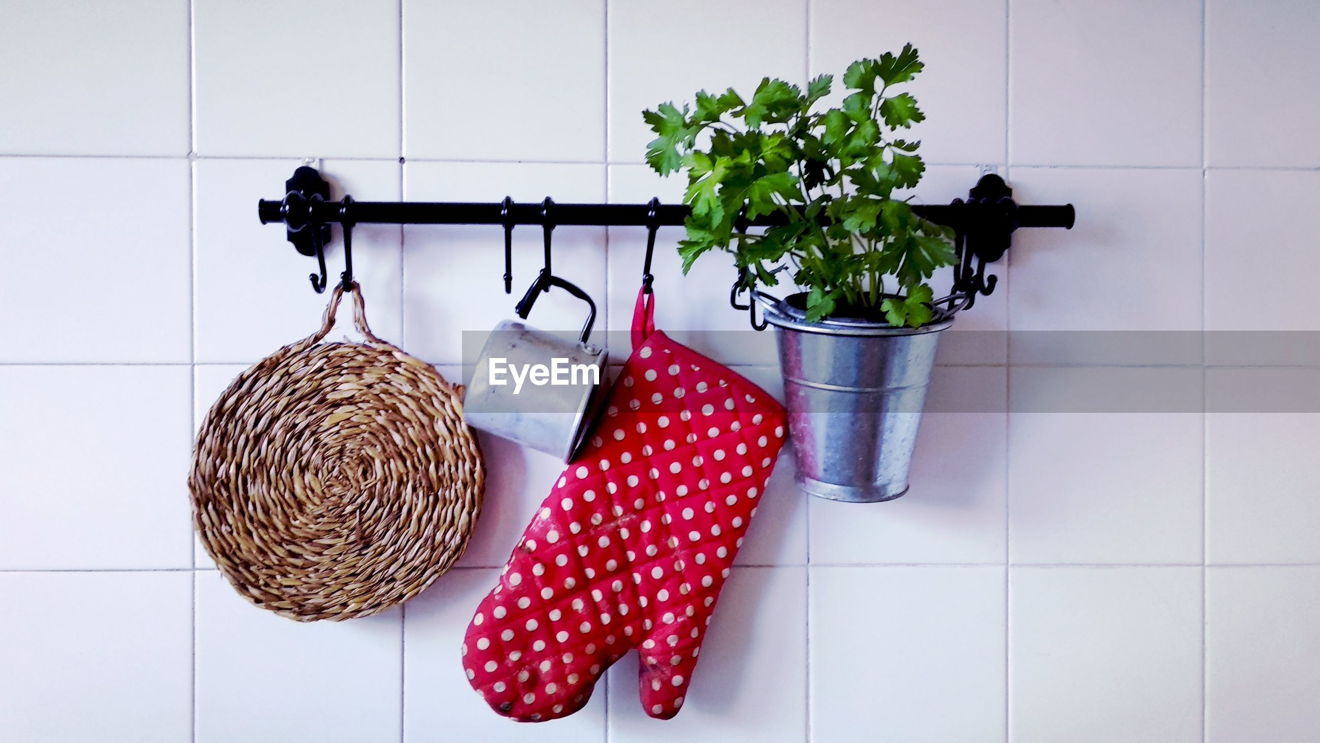 Close-up of oven mitt with potted plant and mug hanging on tiled wall