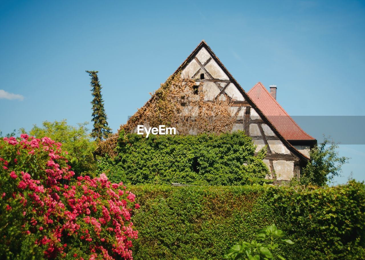 Low Angle View Of Plants On Traditional House Against Sky