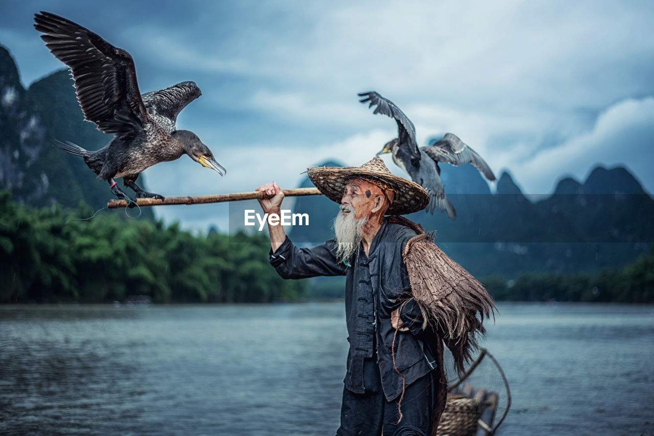 Birds Perching On Stick Held By Man In Lake