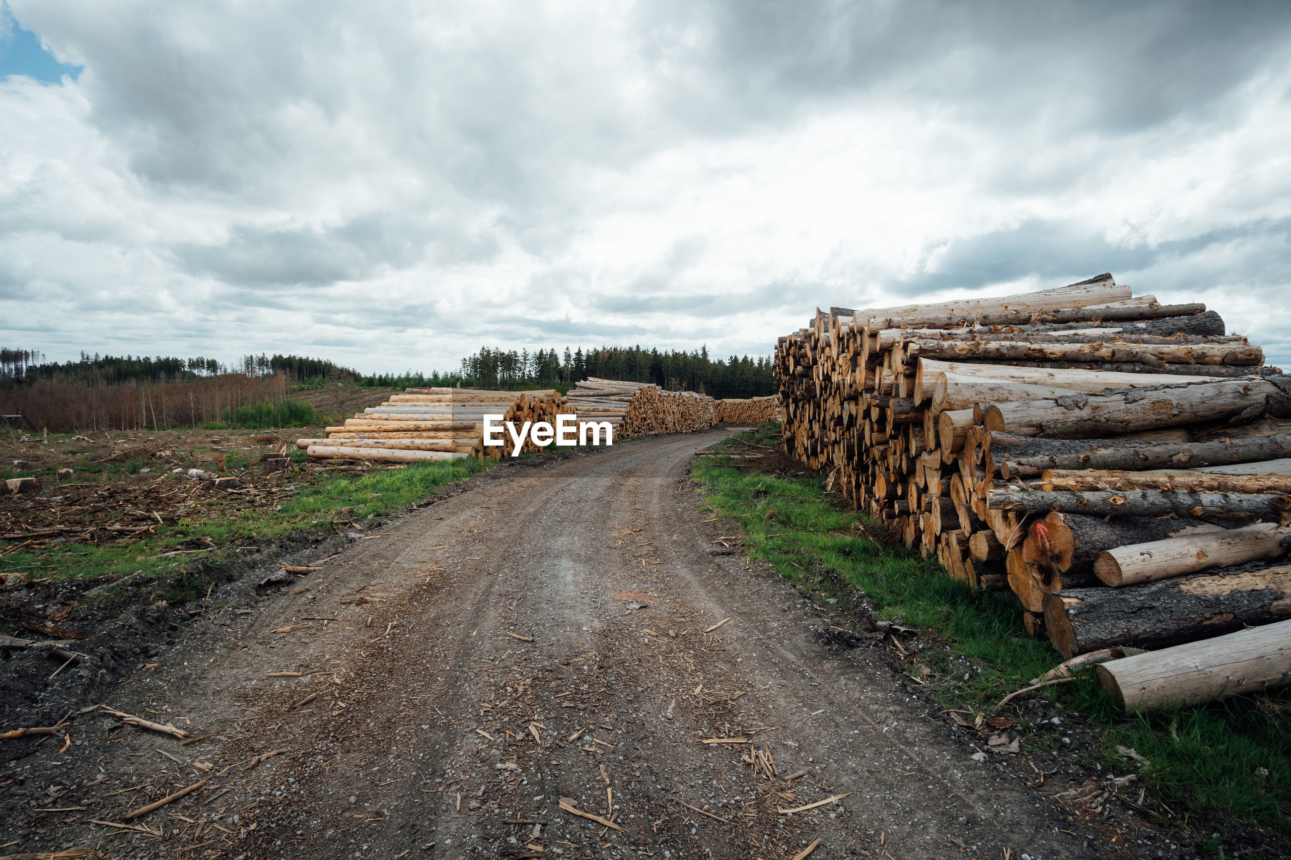 cloud, rural area, sky, road, environment, timber, landscape, nature, tree, logging, wood, log, deforestation, lumber industry, environmental issues, transportation, land, firewood, no people, soil, forest, track, transport, plant, outdoors, the way forward, infrastructure, rural scene, scenics - nature, dirt road, fossil fuel, day, environmental damage, non-urban scene, industry, rock, dirt, overcast